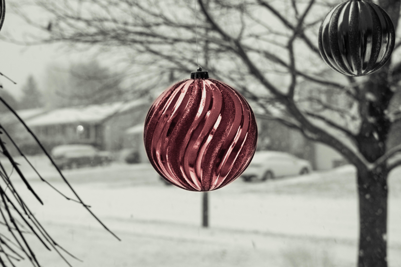 Gambar Pohon Cabang Salju Musim Dingin Hitam Dan Putih