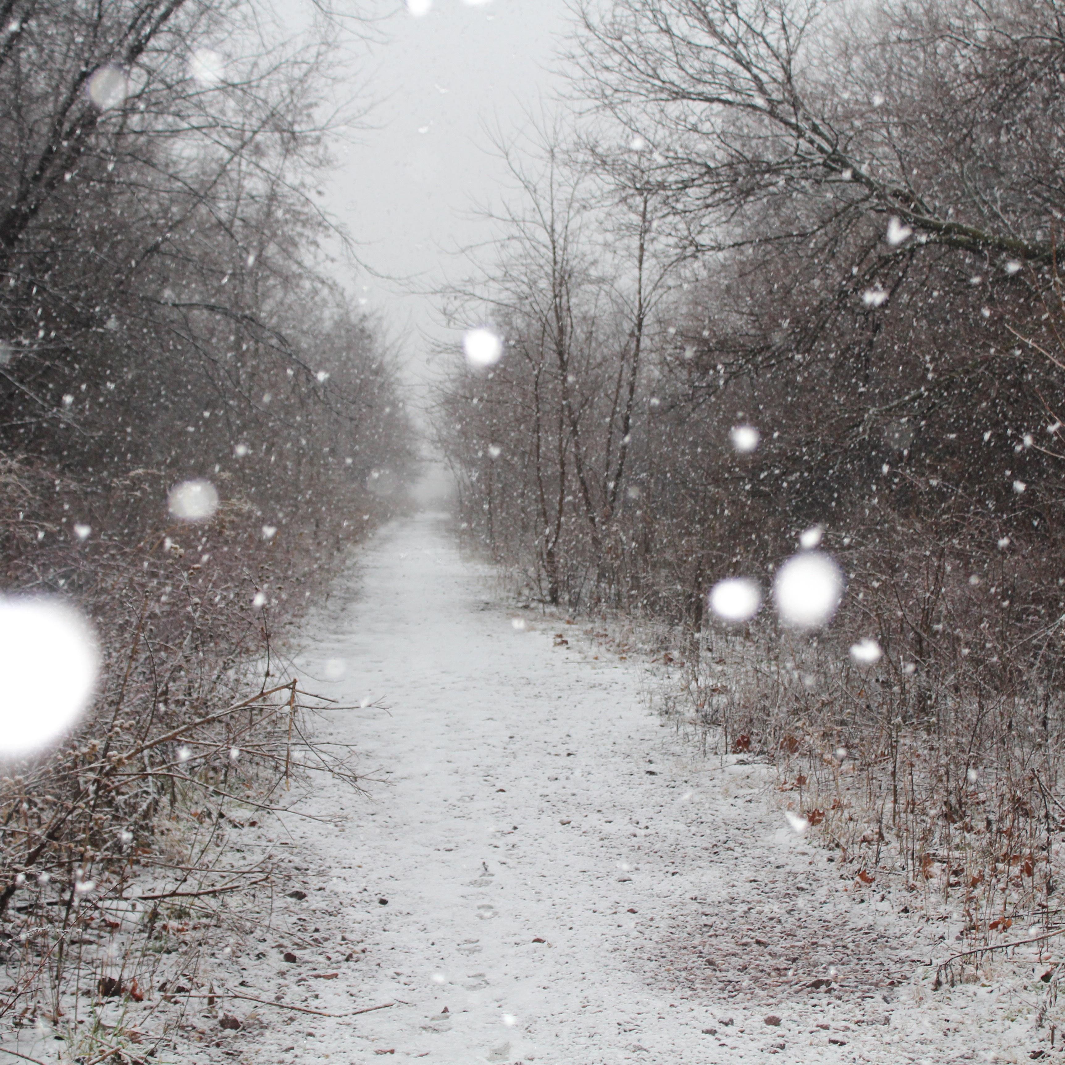 съежилась картинки про снег и дождь можете заказать печать