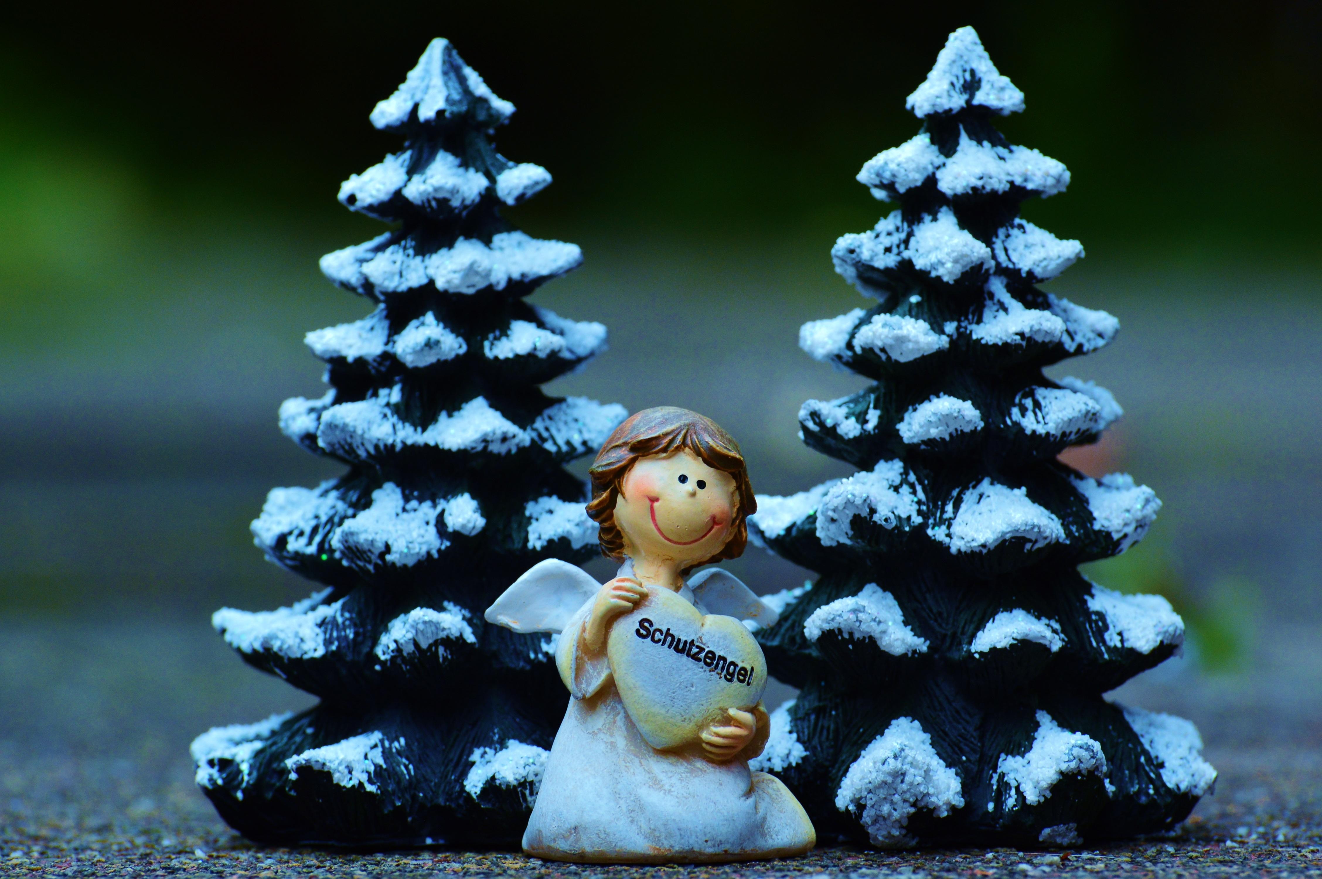 kostenlose foto baum ast schnee winter niedlich dekoration weihnachten tanne dekor. Black Bedroom Furniture Sets. Home Design Ideas