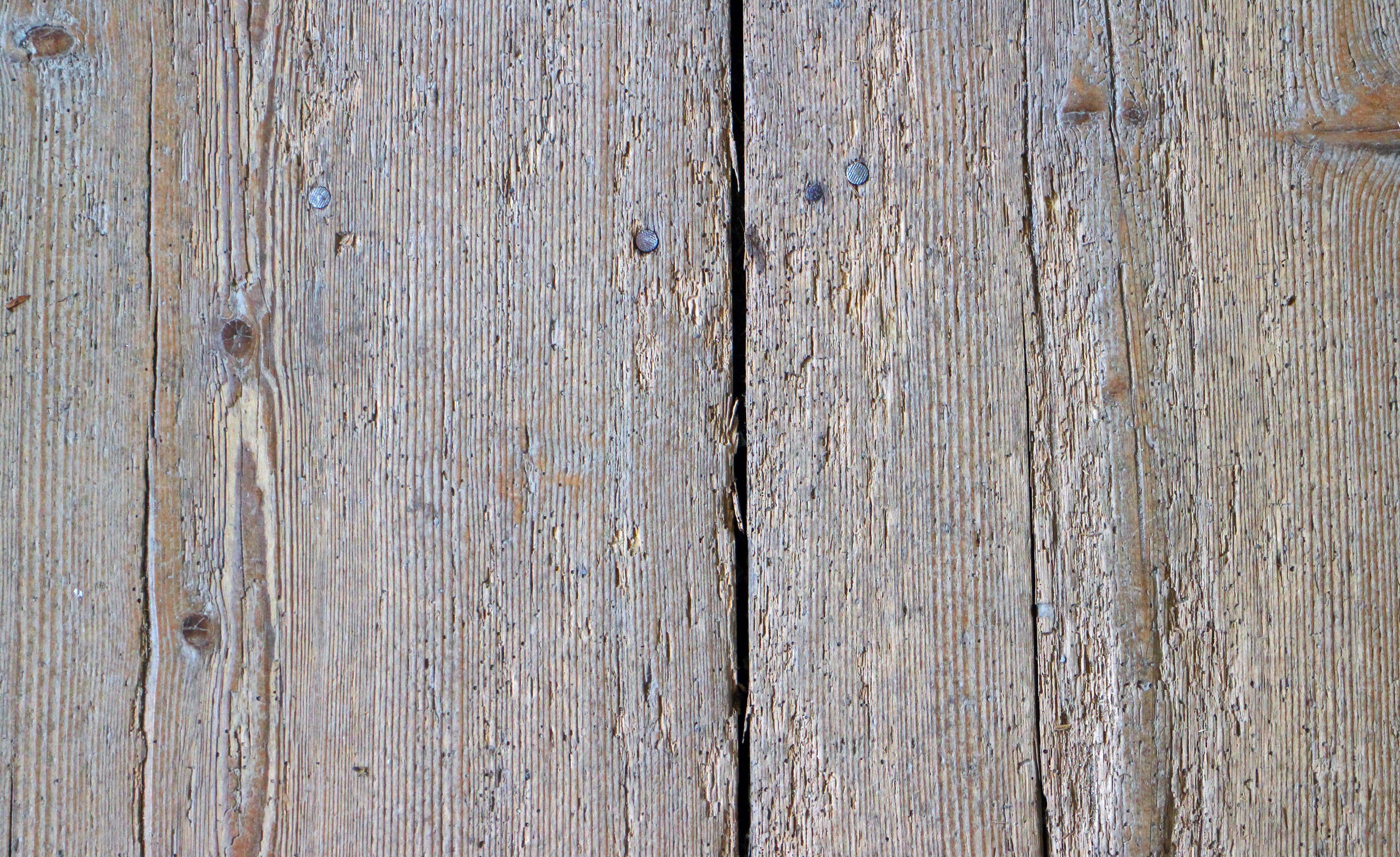 kostenlose foto : baum, ast, struktur, tafel, holz, antiquität, korn