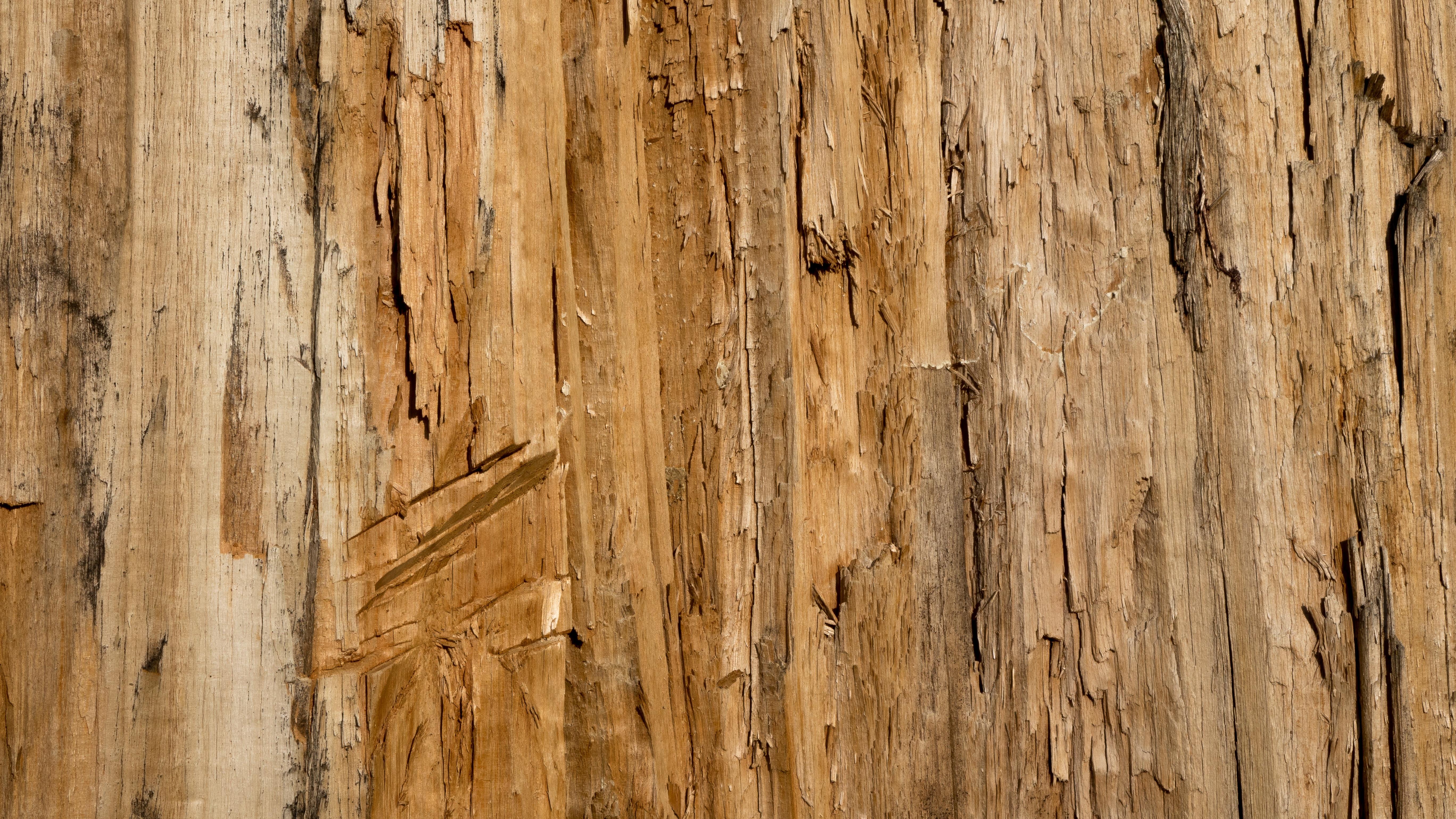Fotoğraf Ağa 231 şube Tahıl Doku Zemin G 246 Vde Duvar