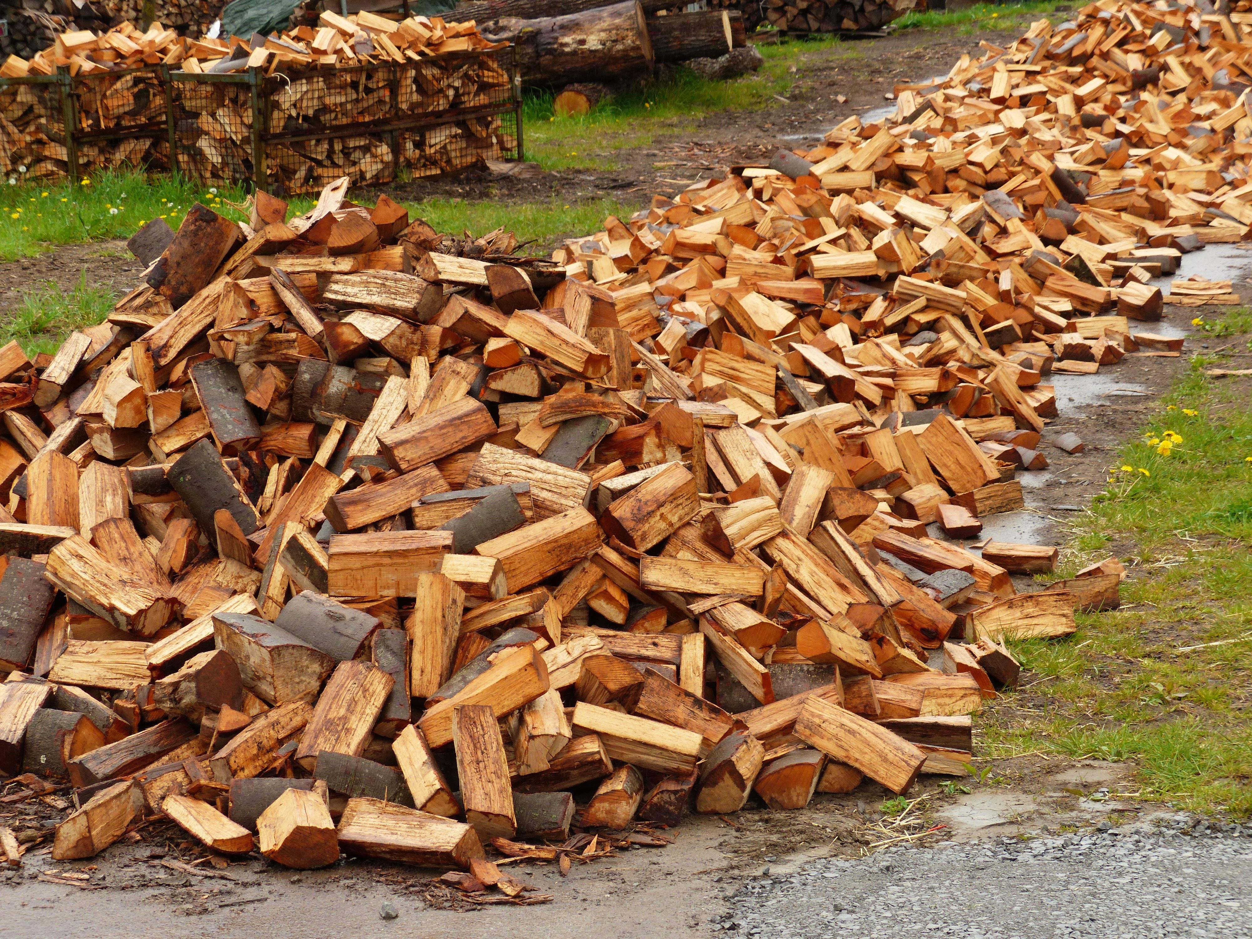 пилящий дрова картинки