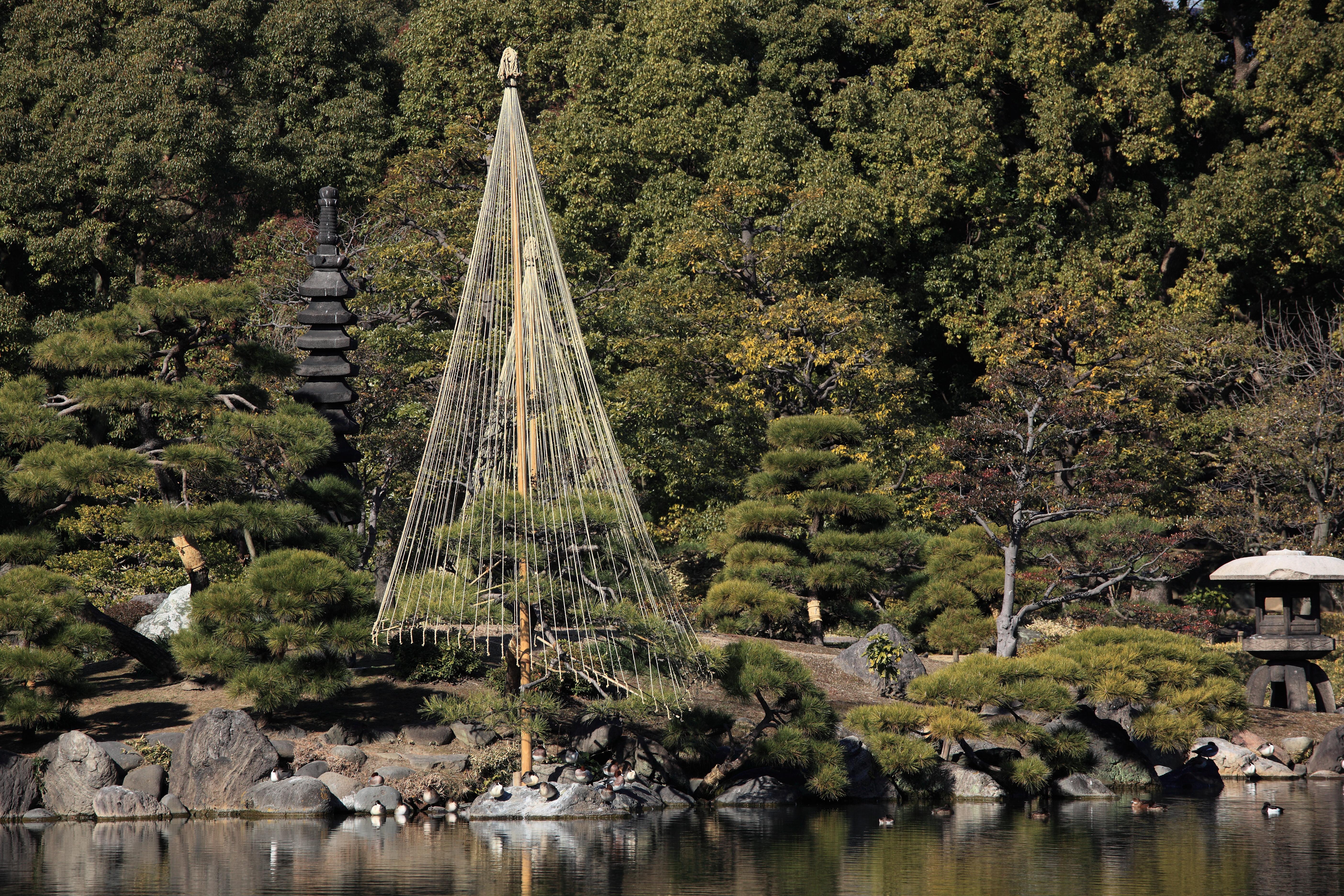 Free Images : tree, bridge, river, high, tower, park, landmark ...