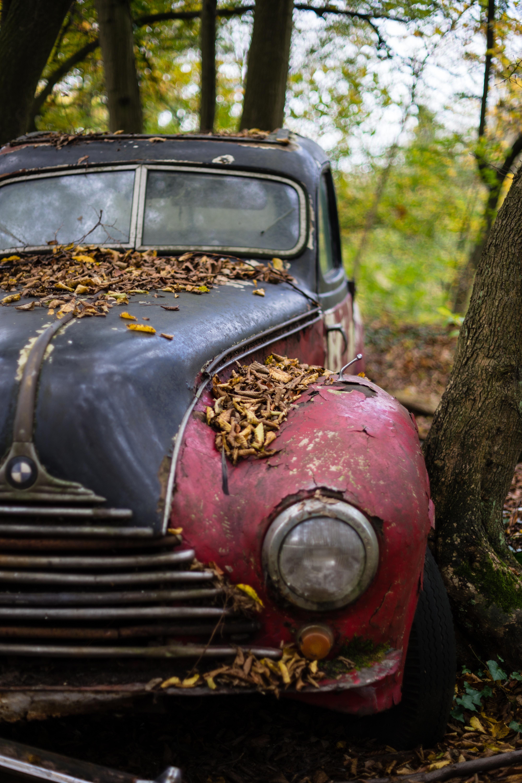 Free Images : tree, old, rust, autumn, abandoned, nostalgia ...