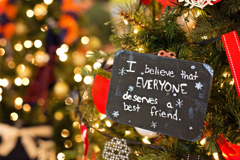Fotos gratis celebracion decoraci n fiesta rbol de - Imagenes decoracion navidad ...