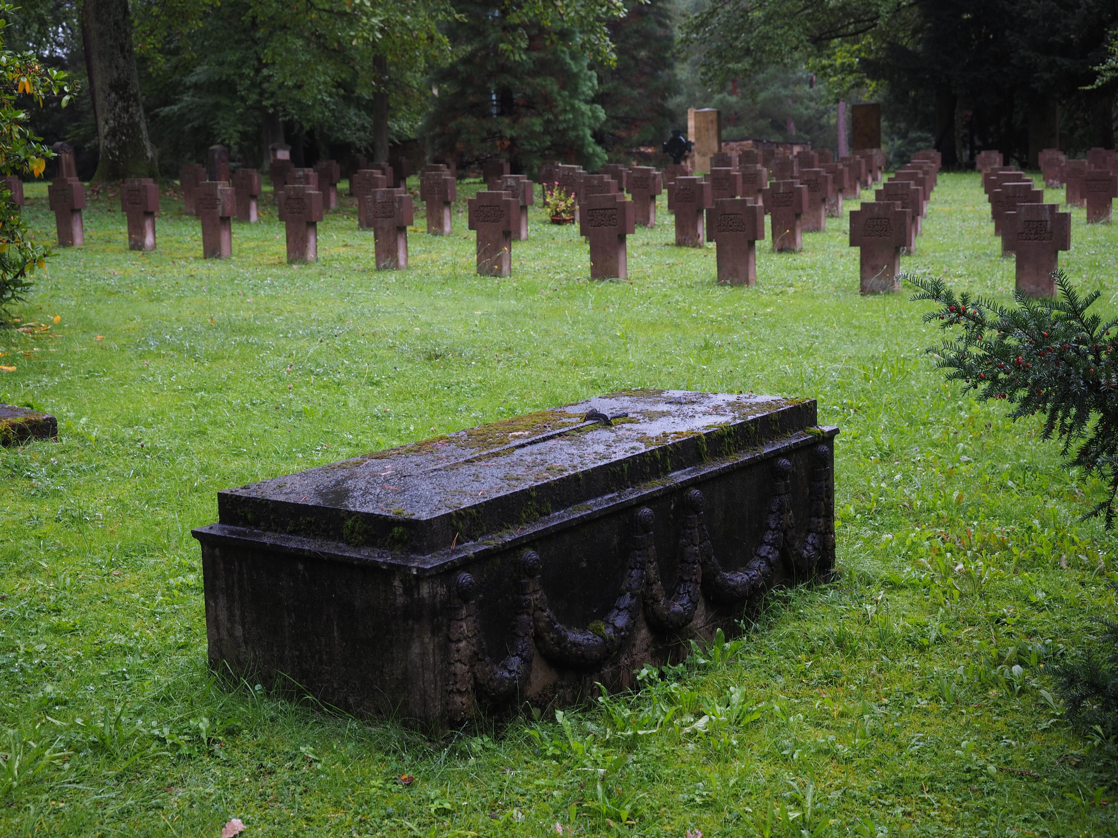 Fotos Gratis 225 Rbol Oscuro Cementerio Jard 237 N Tumba