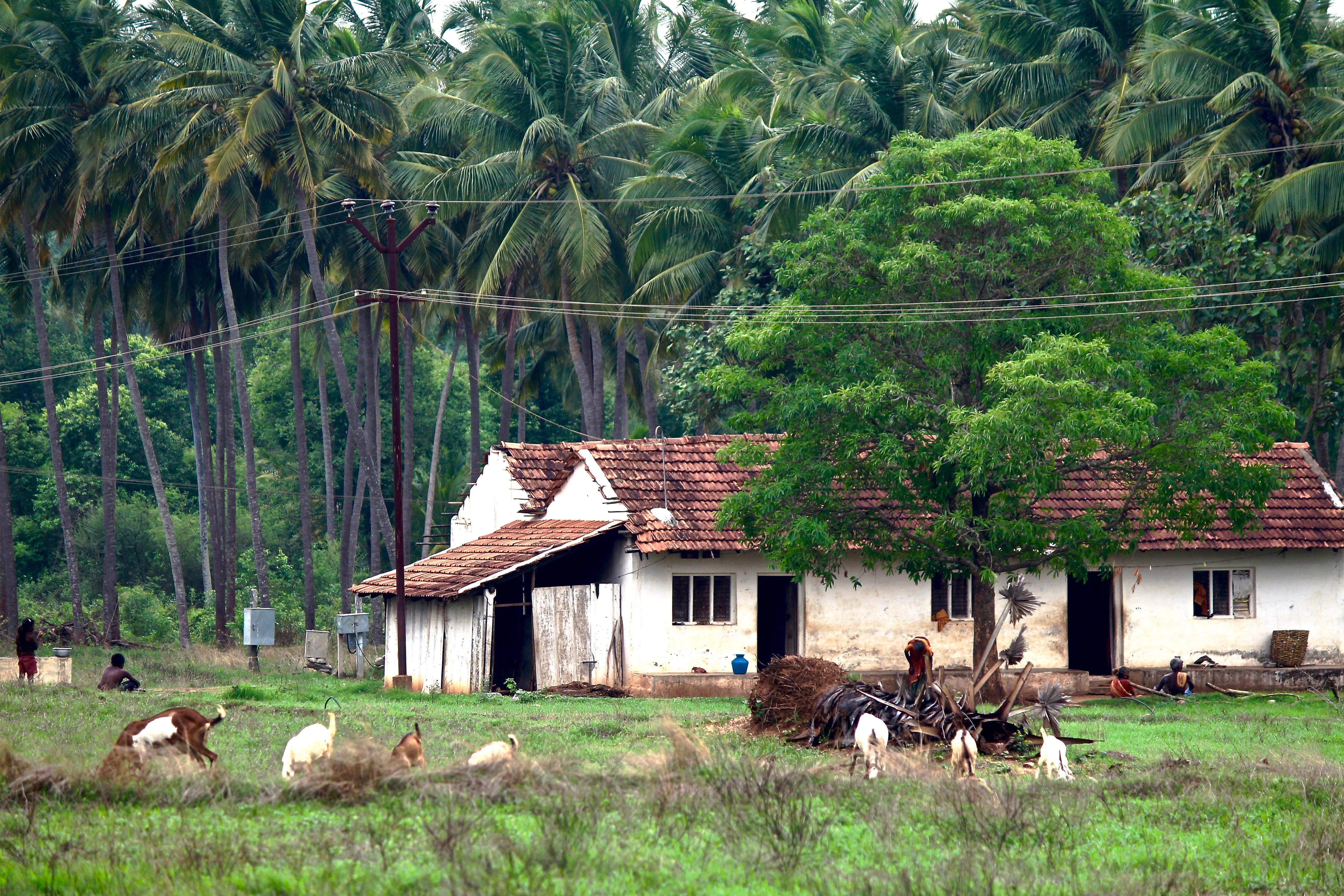деревни в индии фото конечно фундамента