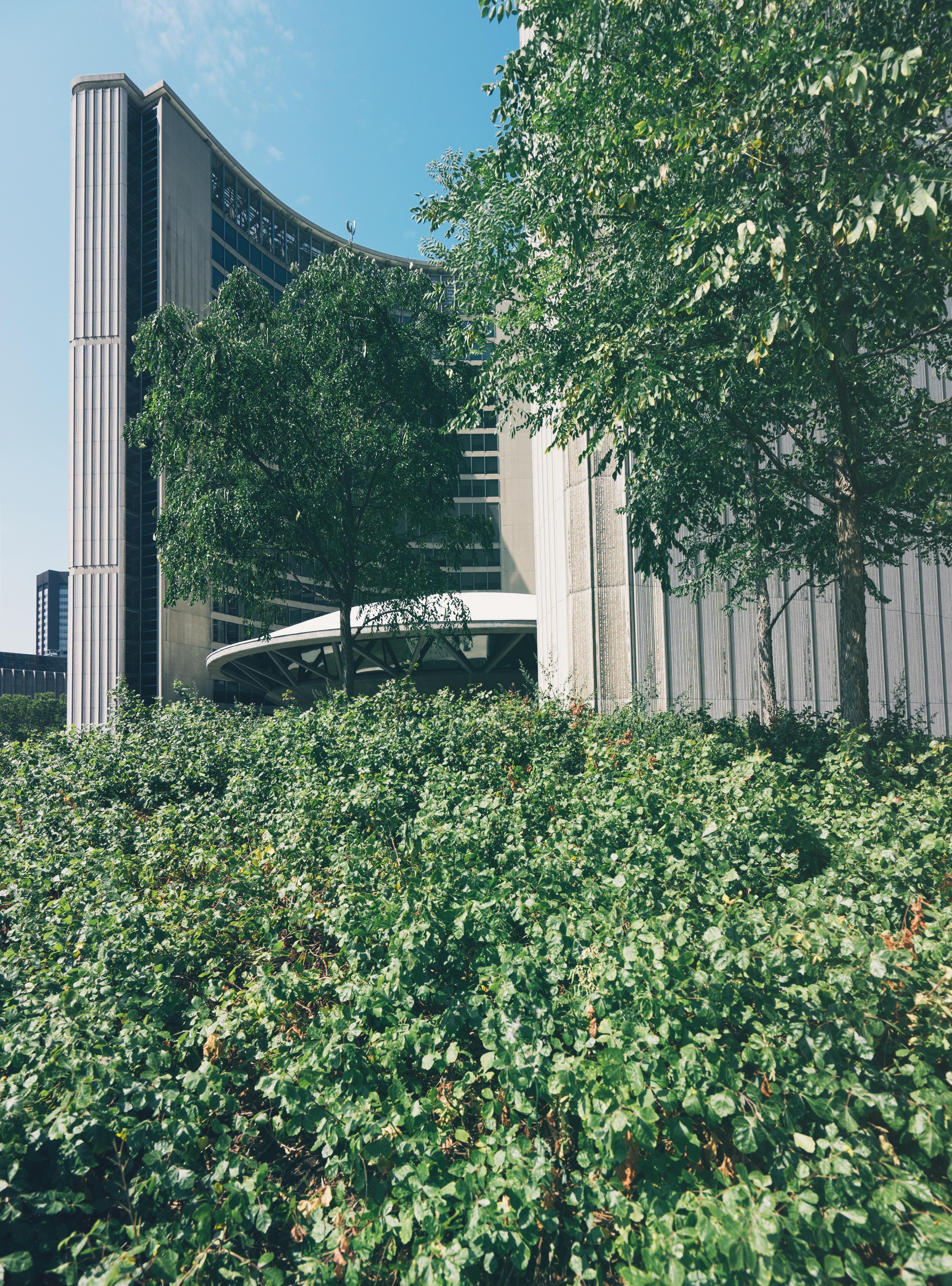 Images Gratuites : arbre, plante, pelouse, maison, feuille ...