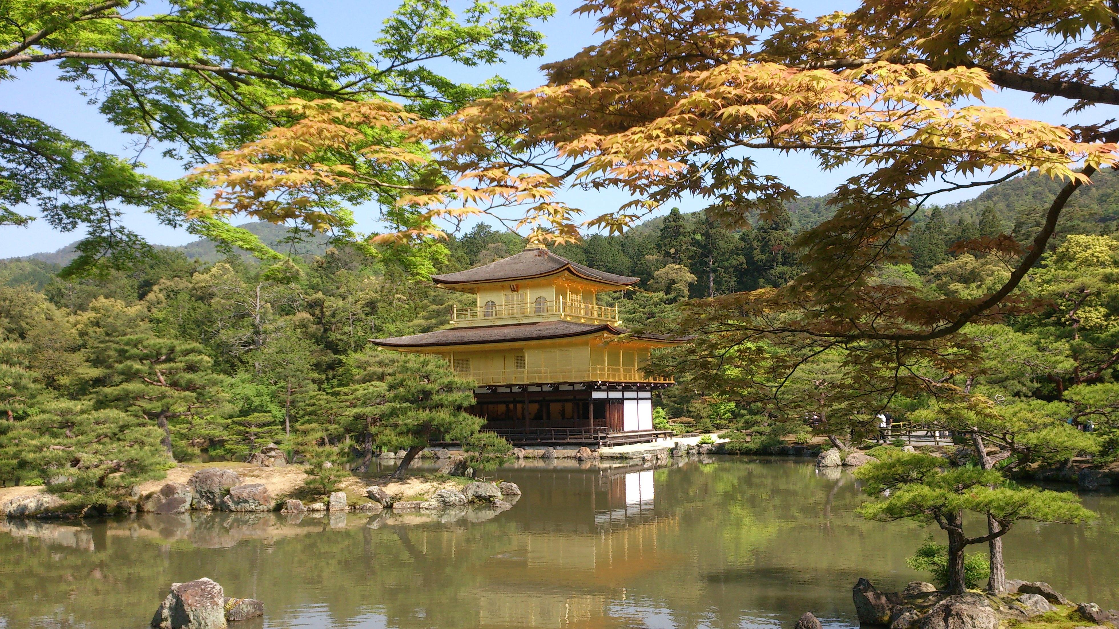 Images Gratuites Arbre Fleur Etang Japon Temple Tombeau