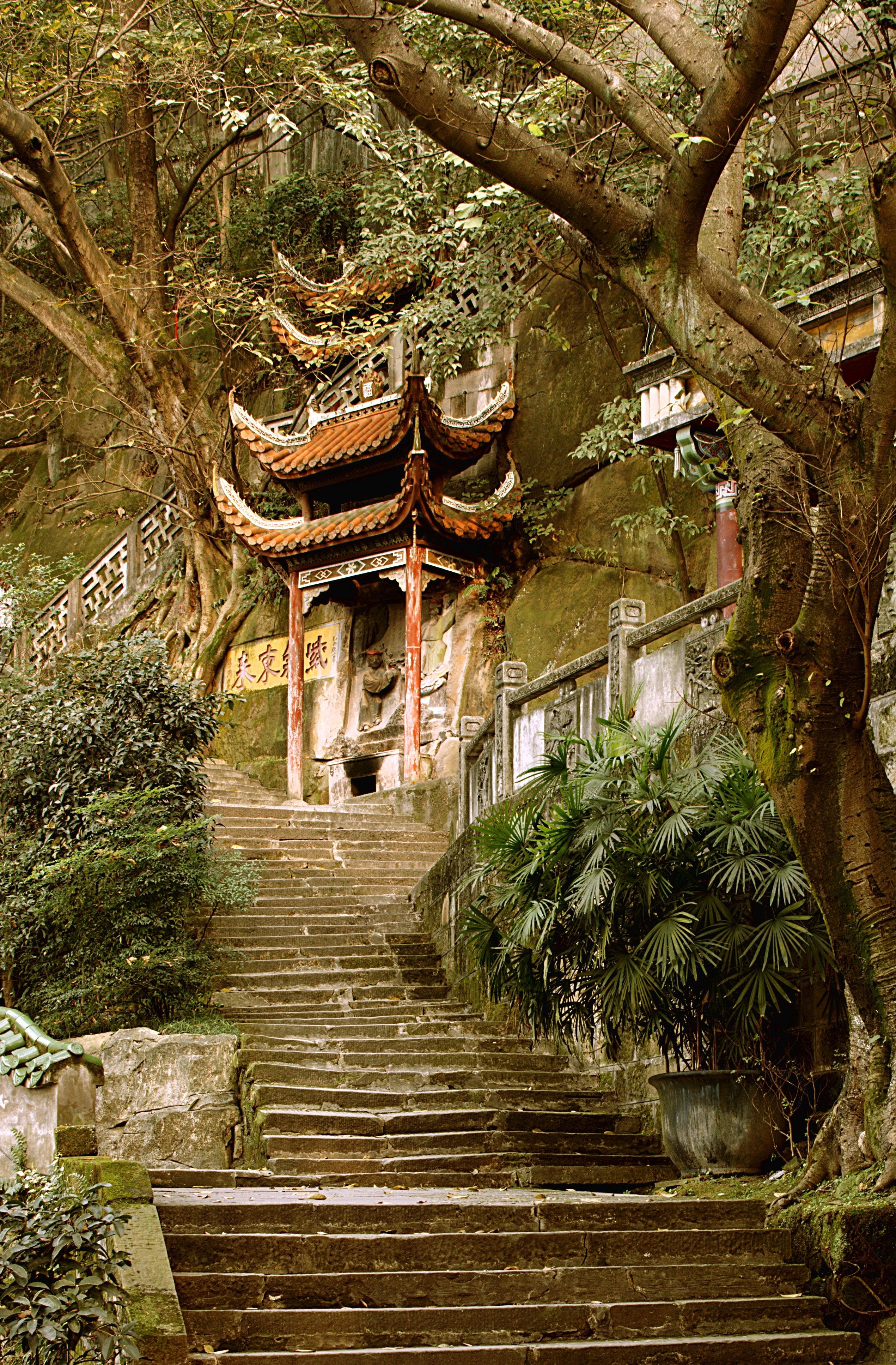 Gratuites arbre fleur pas Voyage chinois jungle