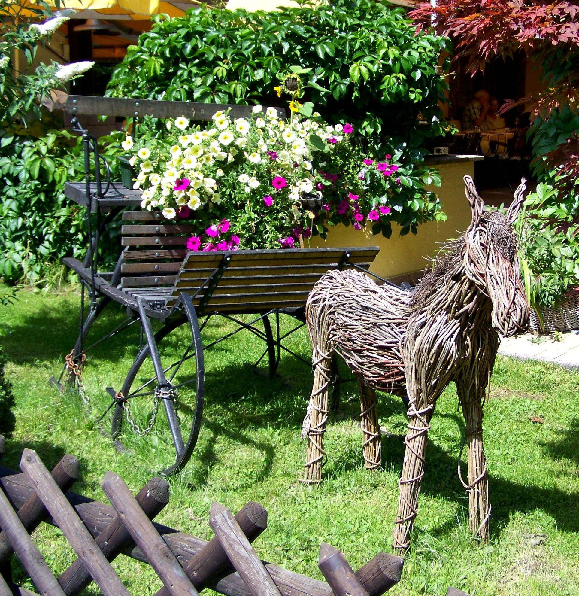 Free Images : tree, flower, zoo, backyard, flora, petunia, yard ...