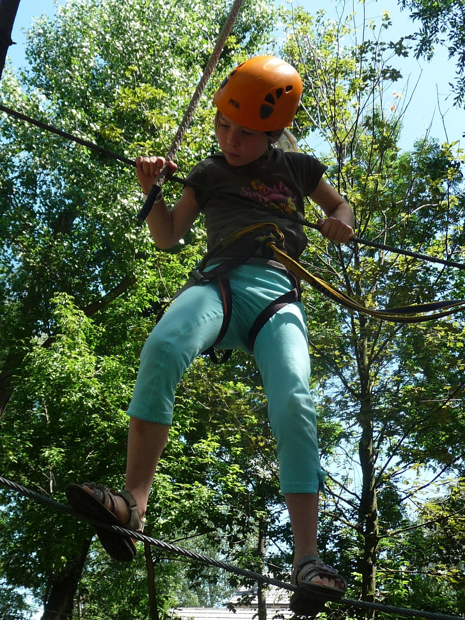 Free Images : tree, adventure, jungle, balance, child ...