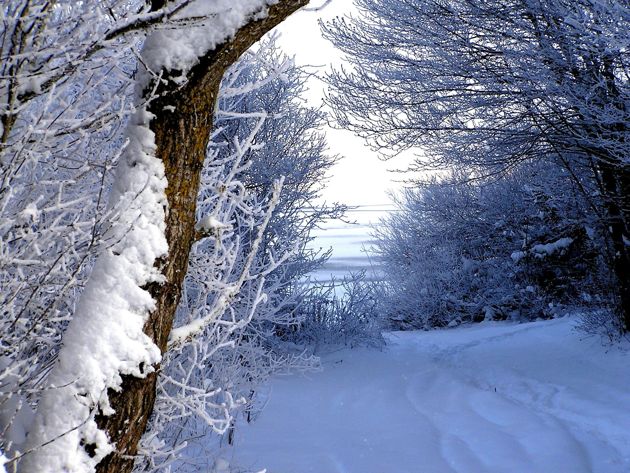 Картинки зимней погоды