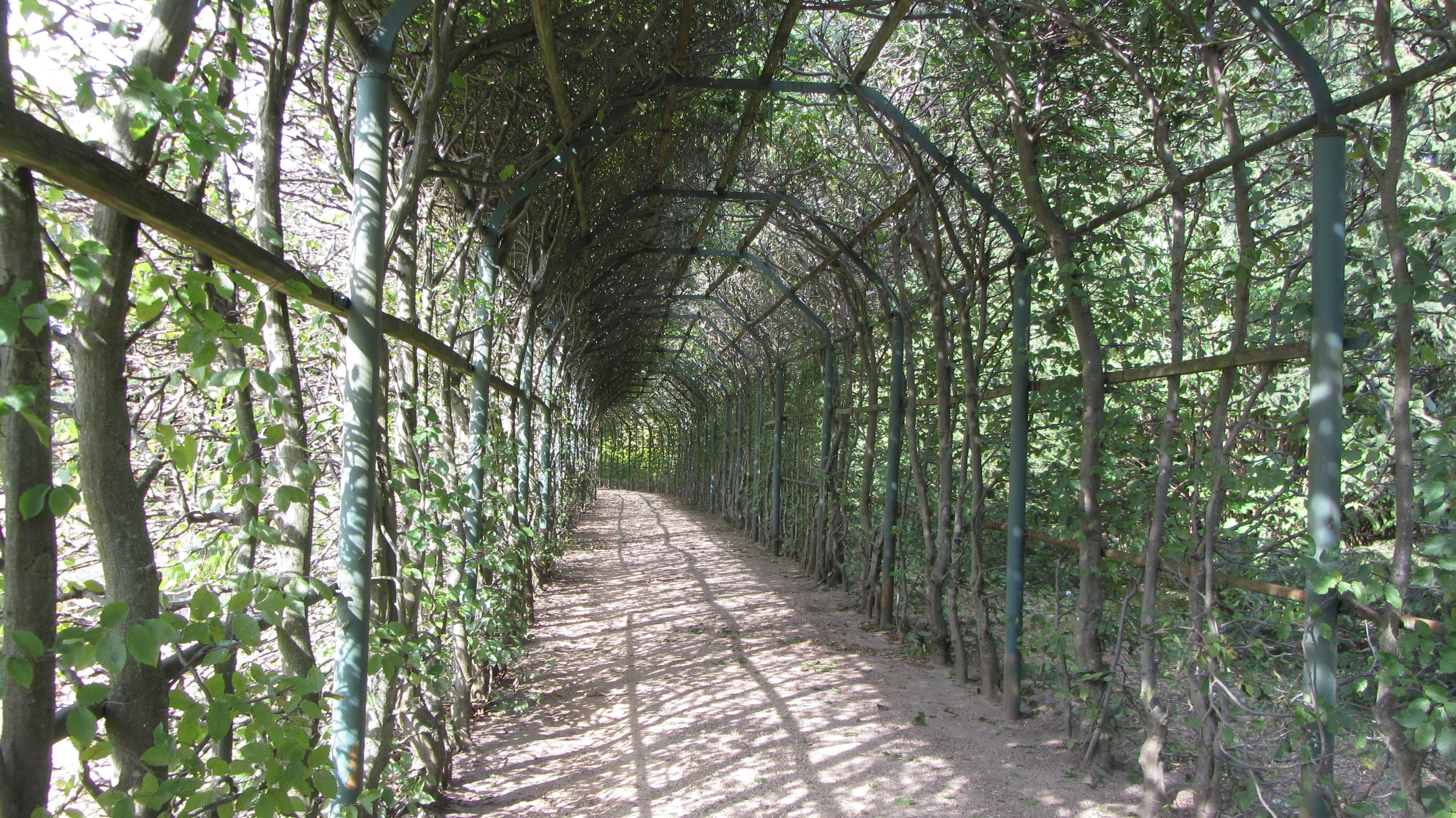 free images tree forest fence trail jungle park shrub plantation portico woodland. Black Bedroom Furniture Sets. Home Design Ideas