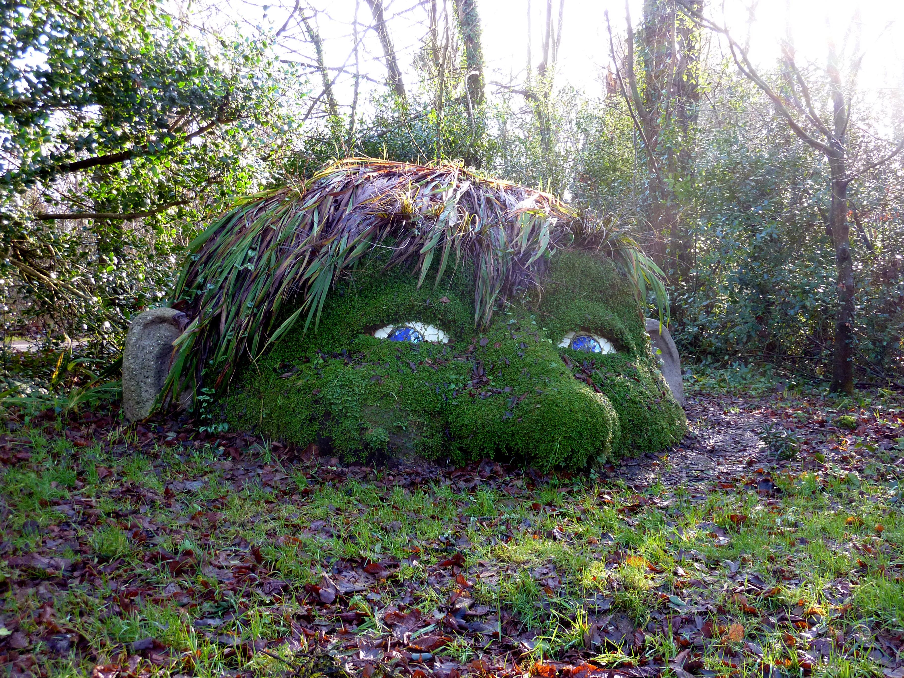 Gärten In Cornwall kostenlose foto baum wald gras wildnis blatt blume dschungel