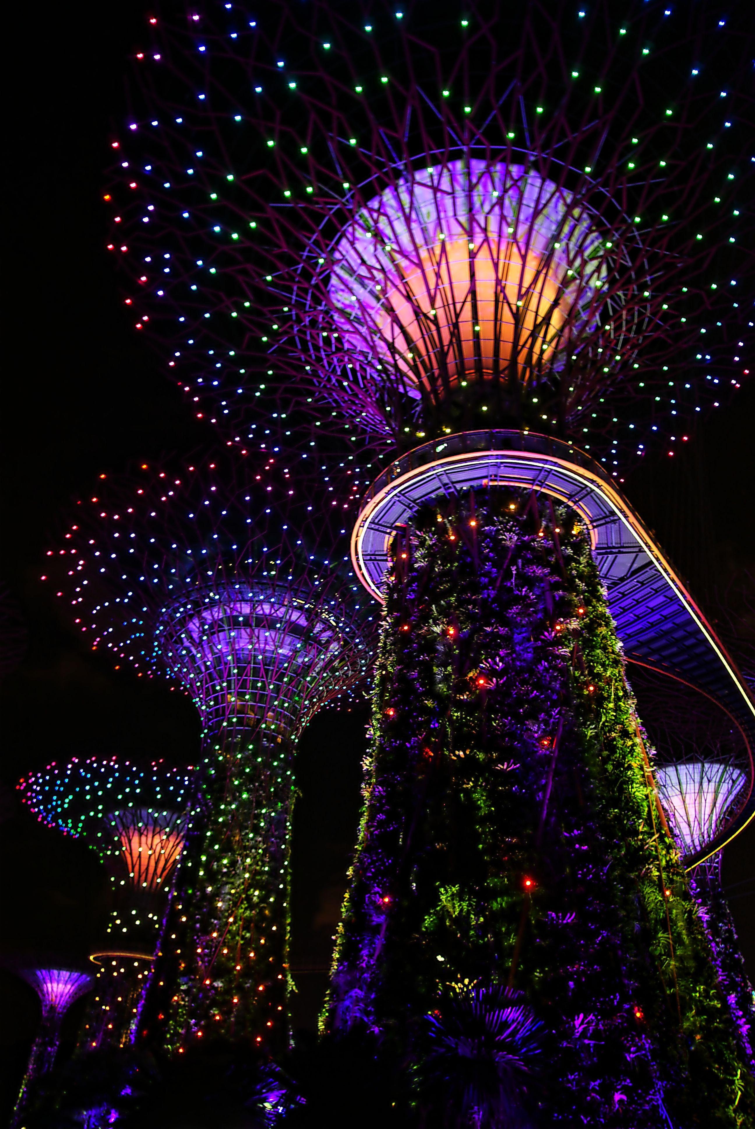 Images Gratuites : arbre, forêt, lumière, architecture, Horizon ...