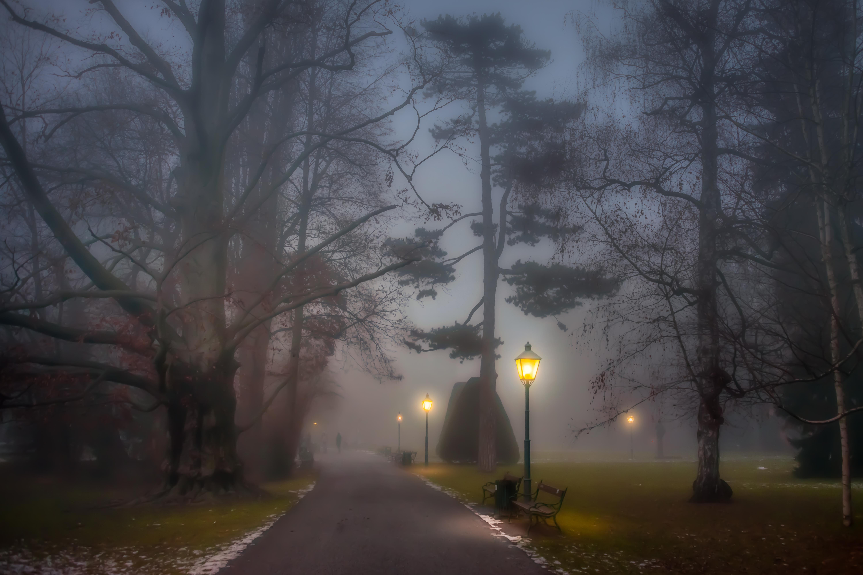 картинки на тему ночь и густой туман народ считался самовольным