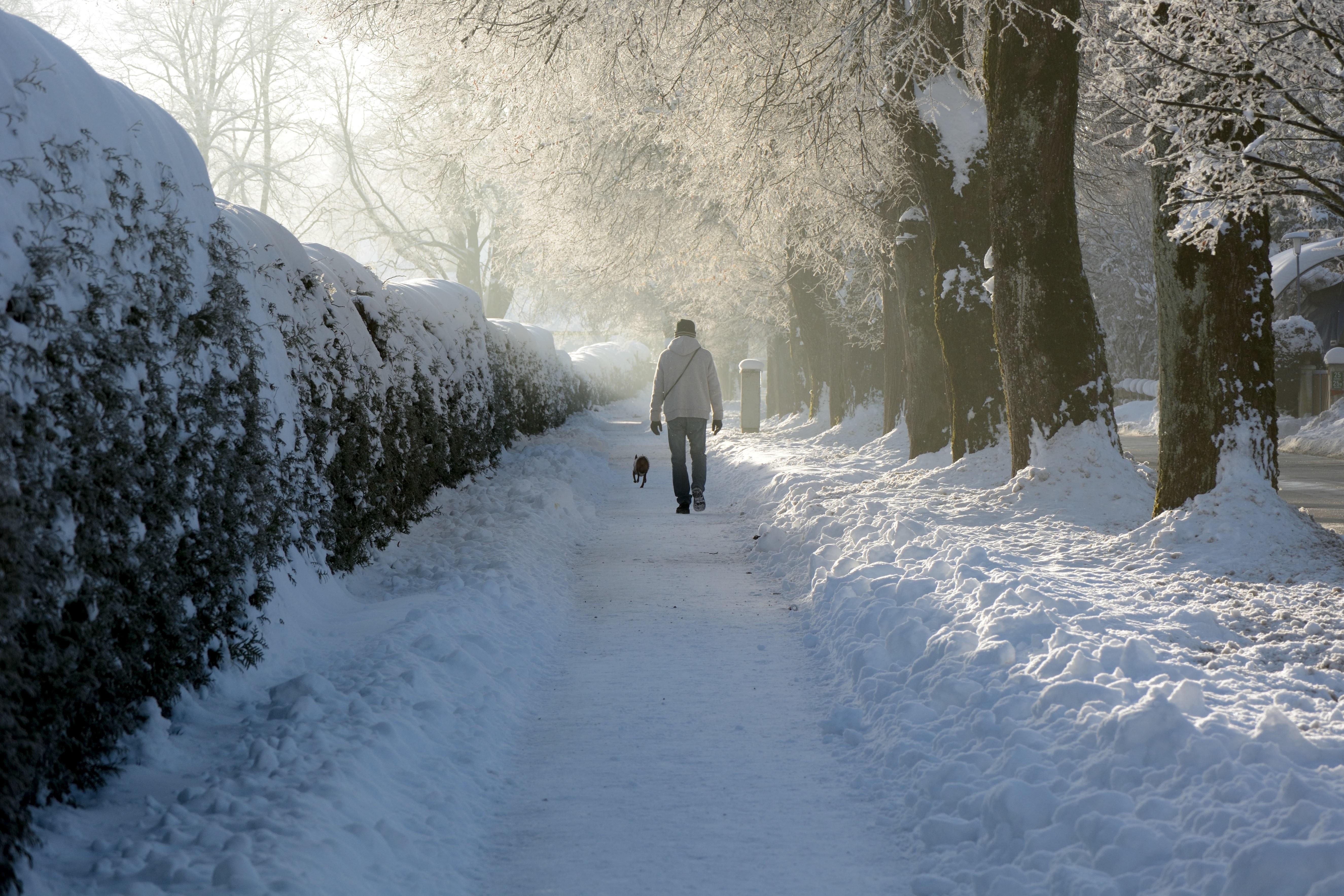картинка зима снег человек женщин собранная юбка