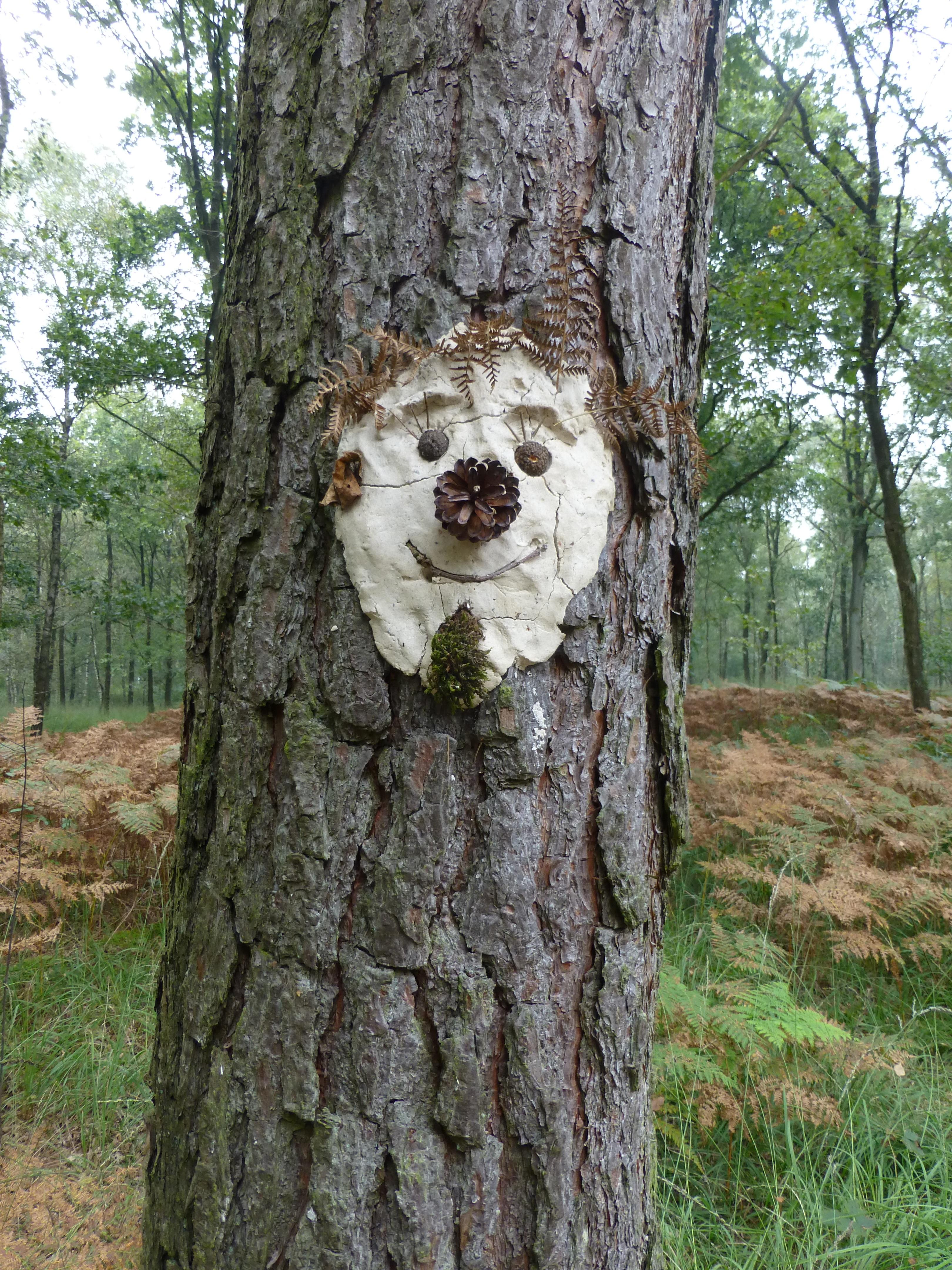 Un arbre hill porn