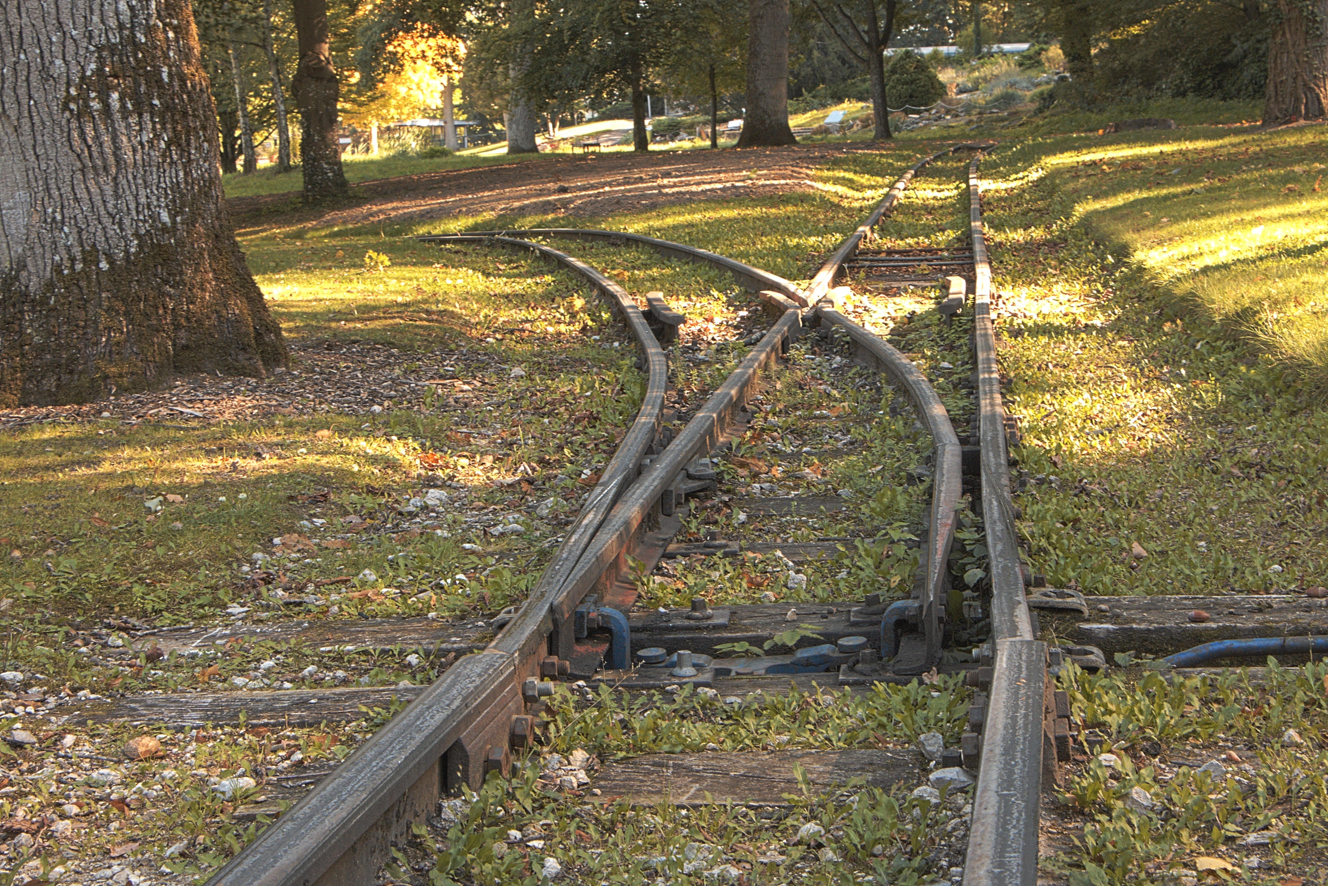как фотографировать железную дорогу свадьбы, фотоидеи