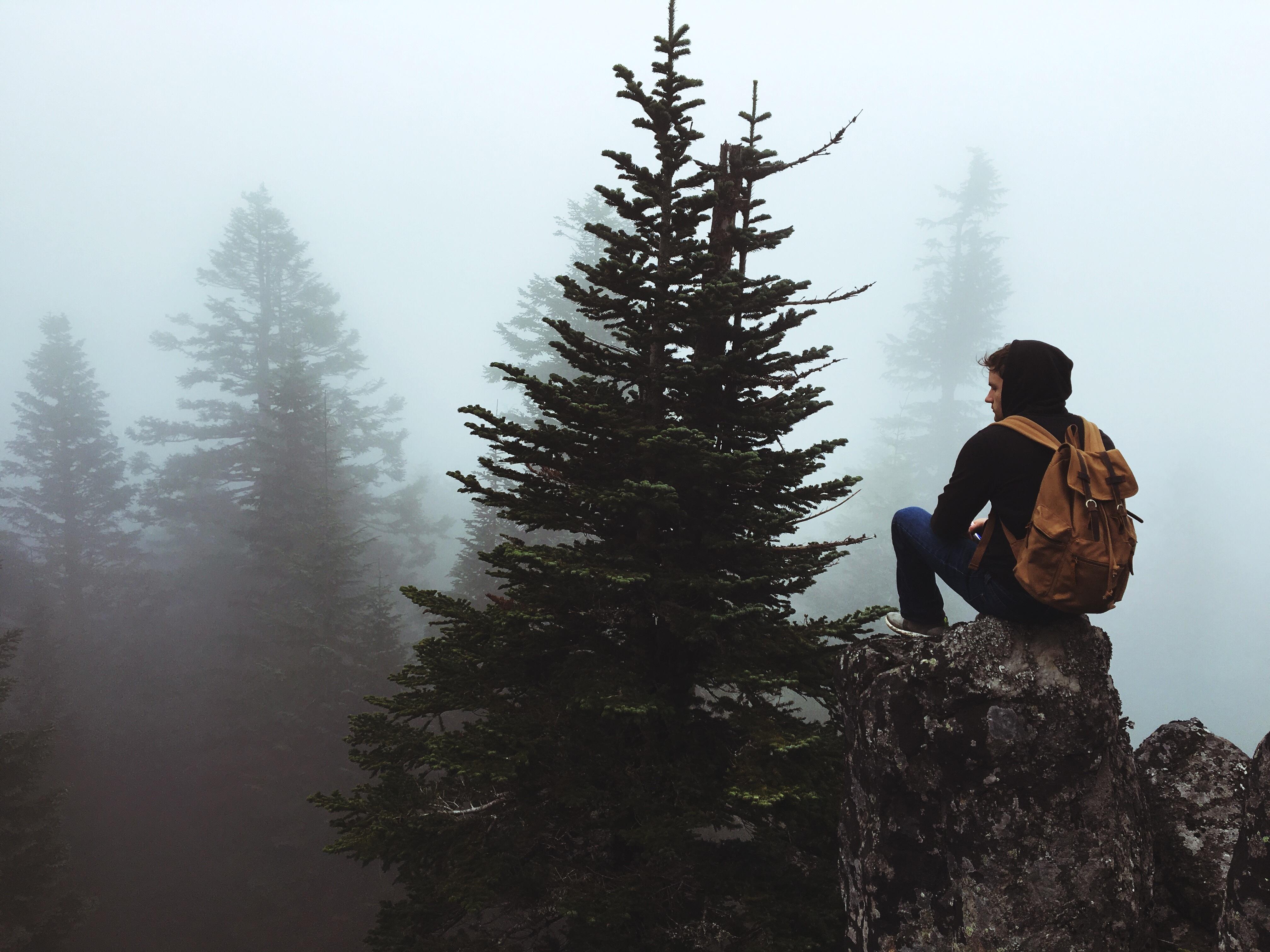 Мужчина в лесу картинки