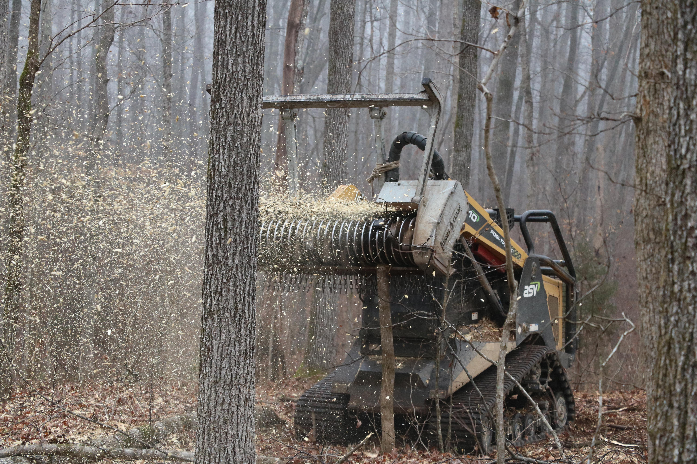 горско дърво Безплатна снимка : дърво, гора, машина, горско стопанство, сеч  горско дърво