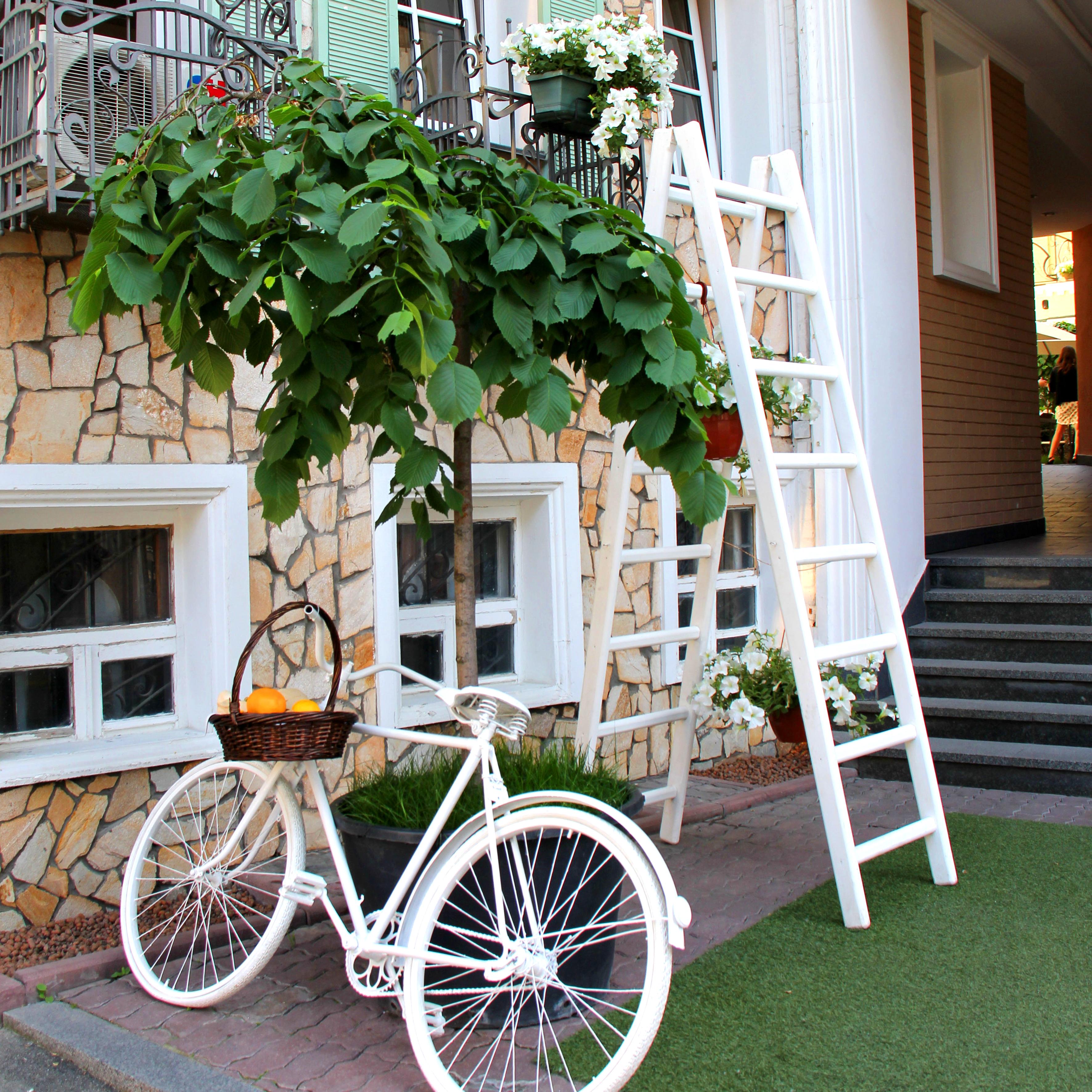 Fotos gratis : árbol, césped, arquitectura, madera, rueda, casa ...