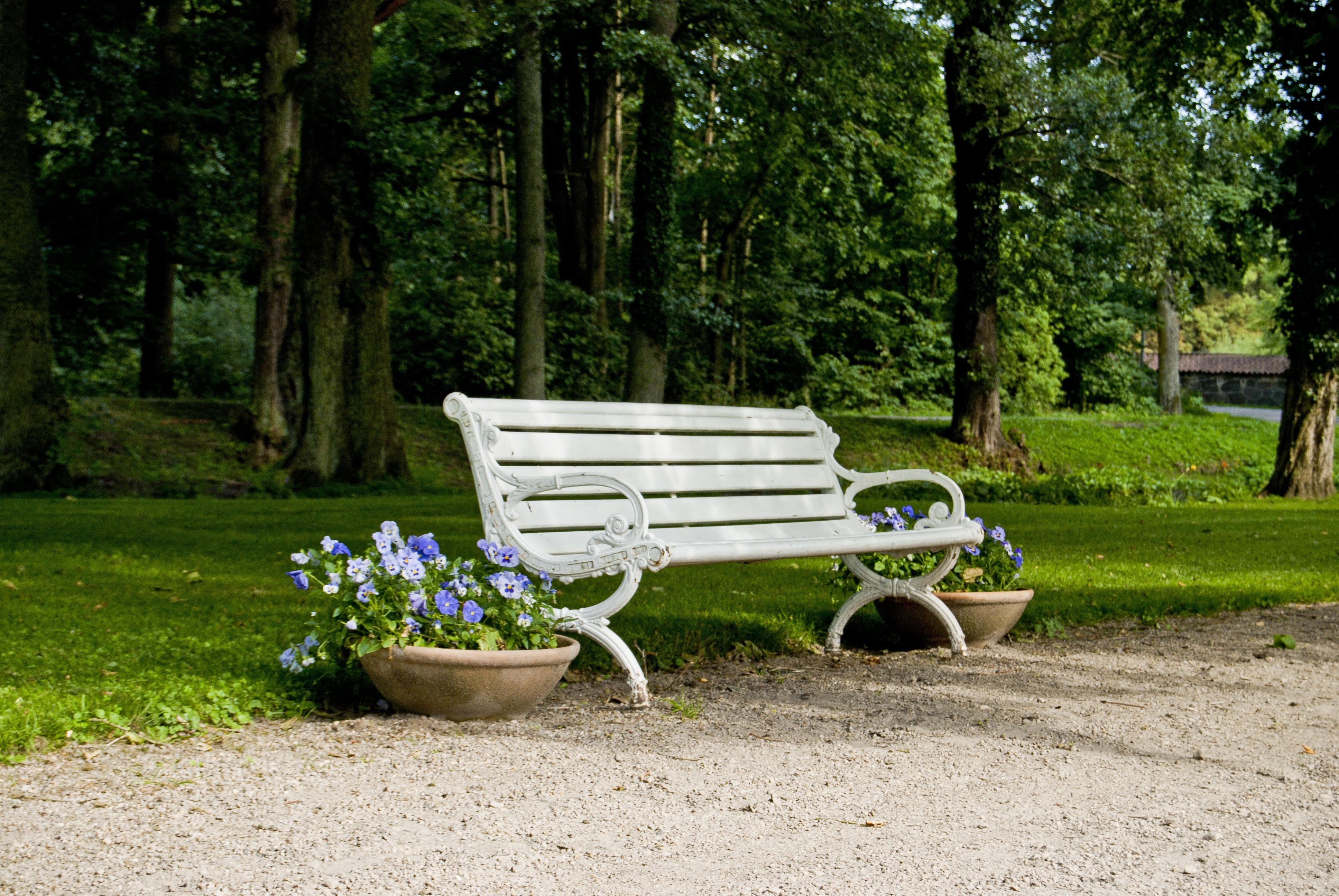 Fotos gratis : árbol, césped, banco, flor, patio interior, romántico ...