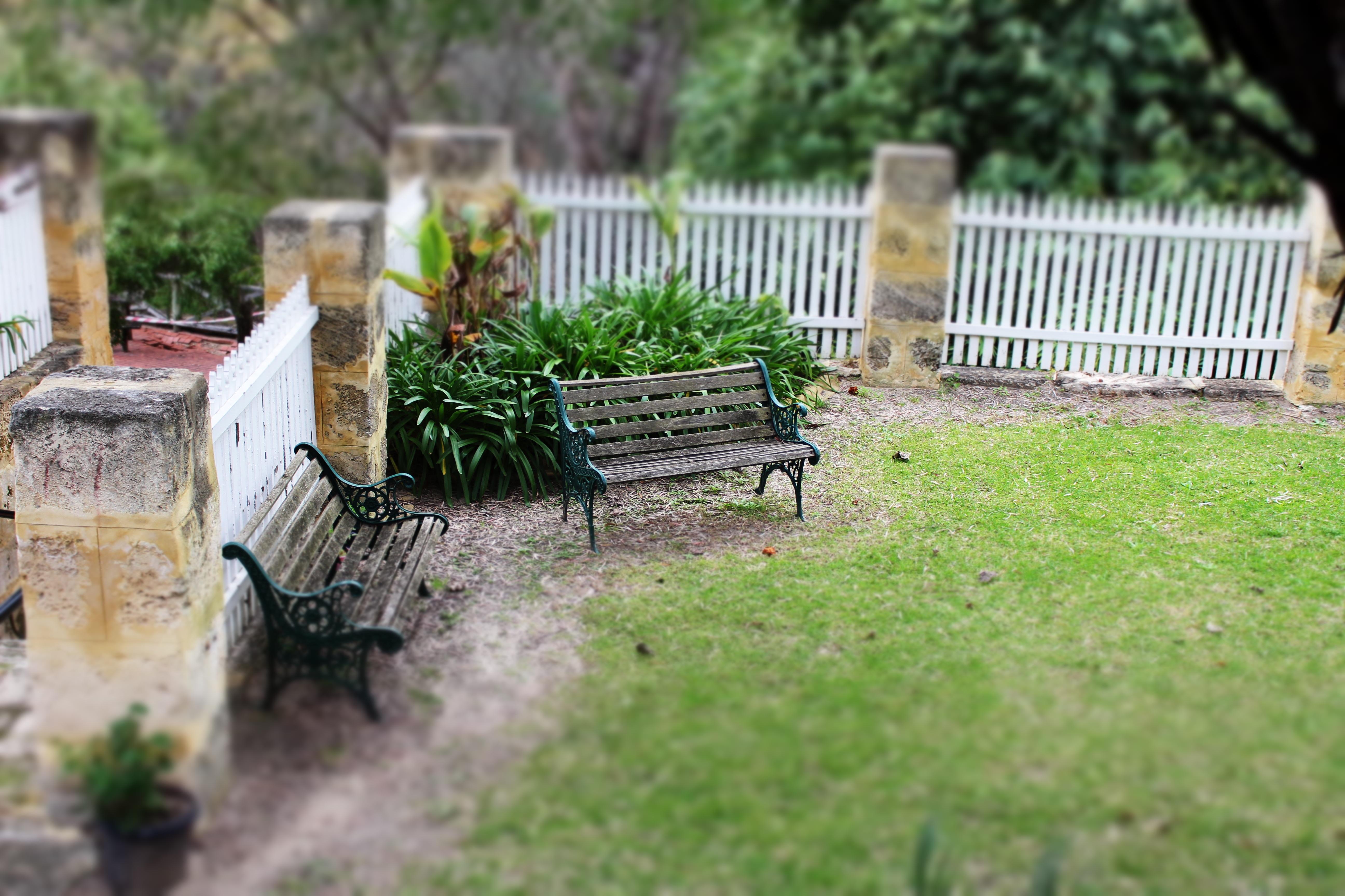 Сосет через забор на ферме фото 279-960