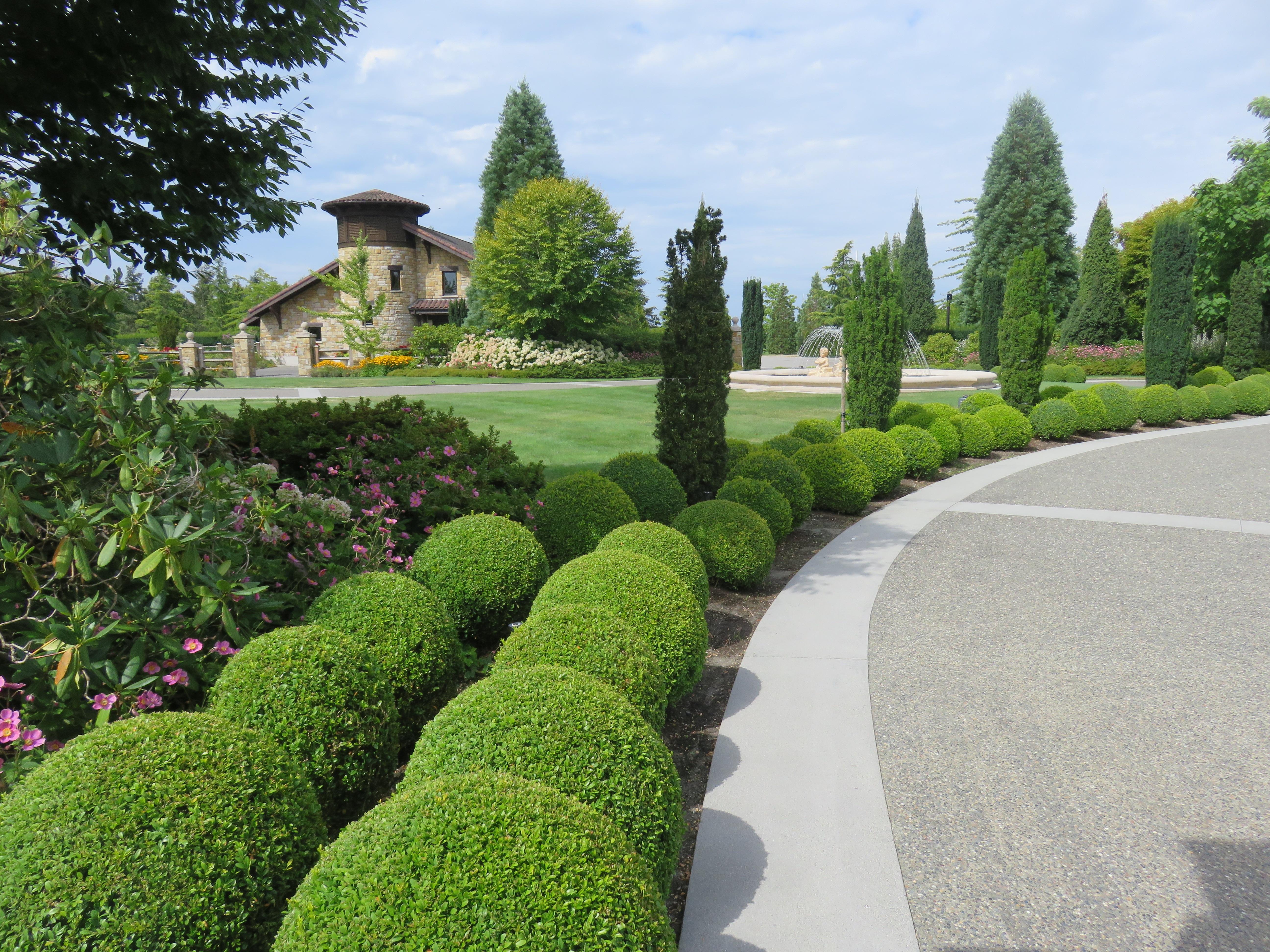 Kostenlose foto Baum Gras Rasen Blume Grün Bäume