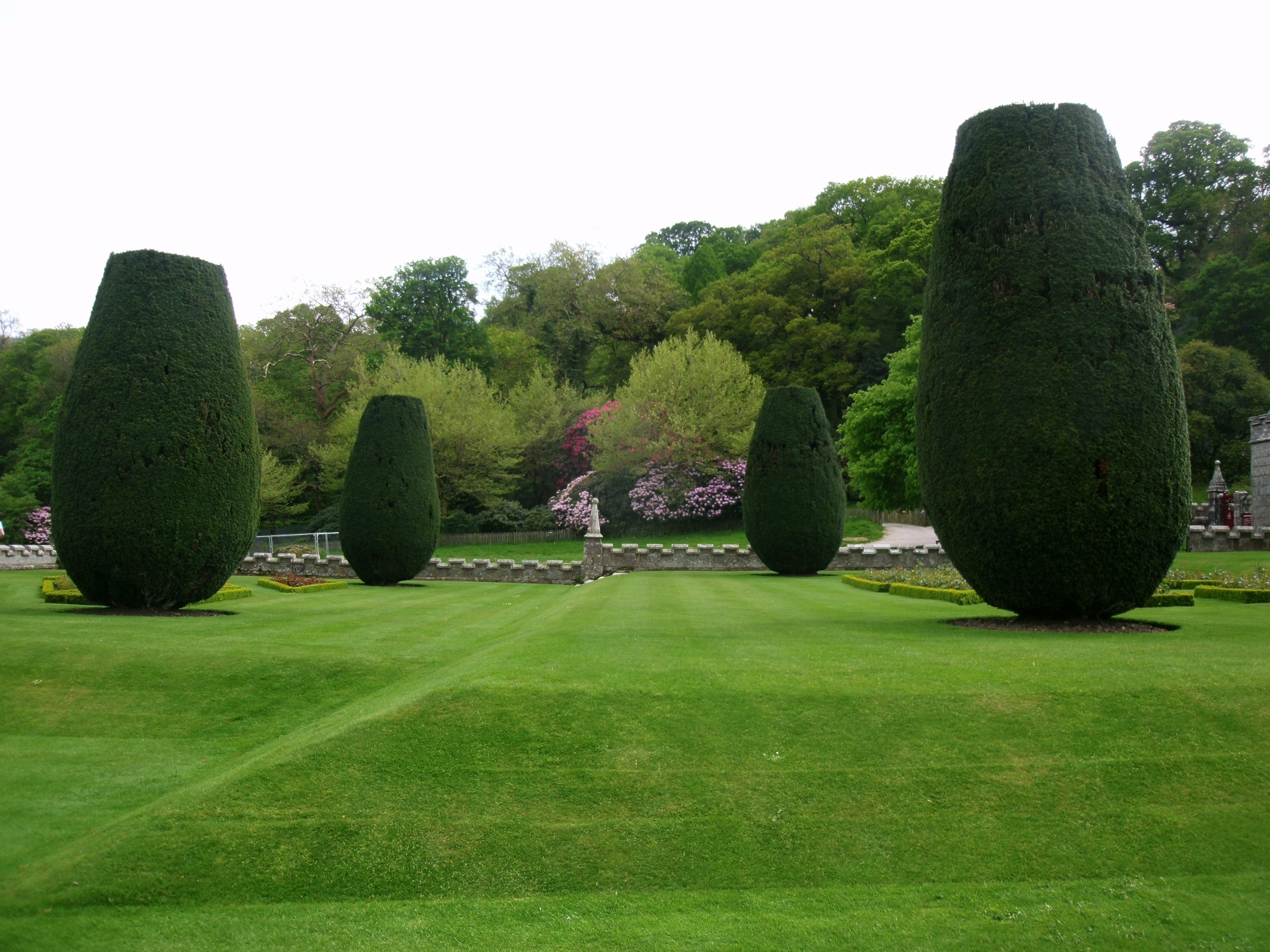 Fotos gratis rbol c sped estructura planta verde for Jardin ingles