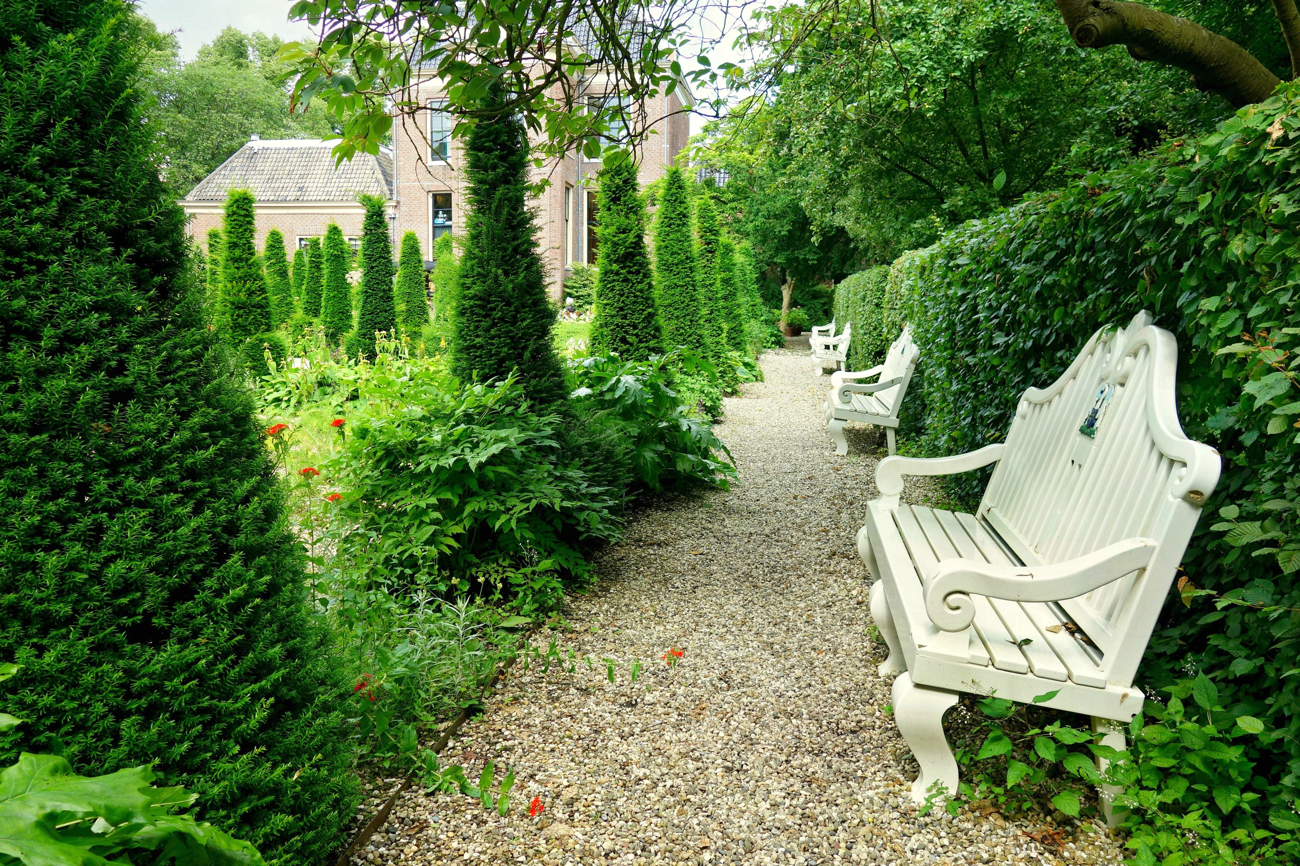 Fotos gratis : árbol, césped, banco, flor, asiento, antiguo ...