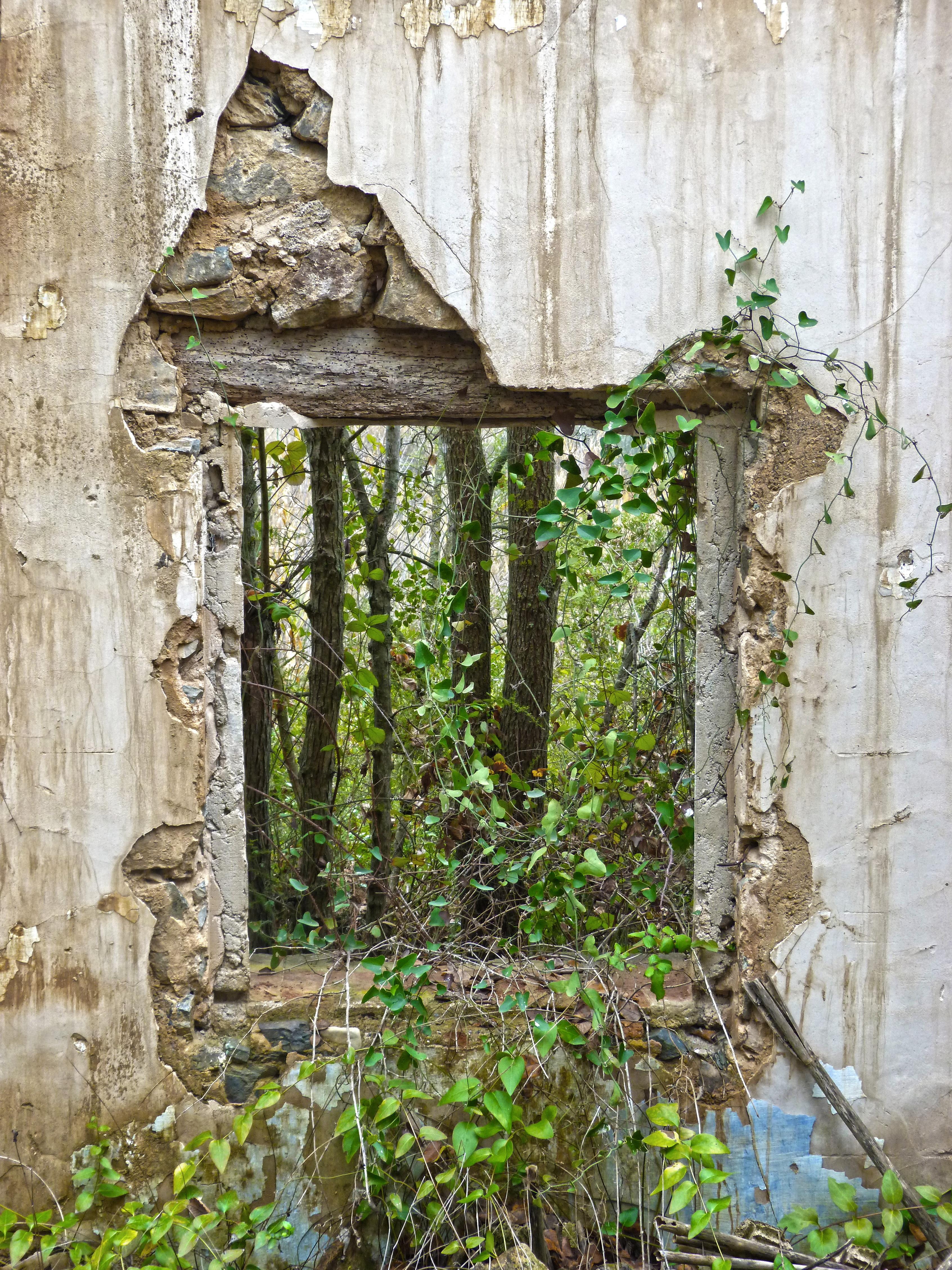 Images gratuites arbre maison fleur fen tre mur for Jardins romantiques francais