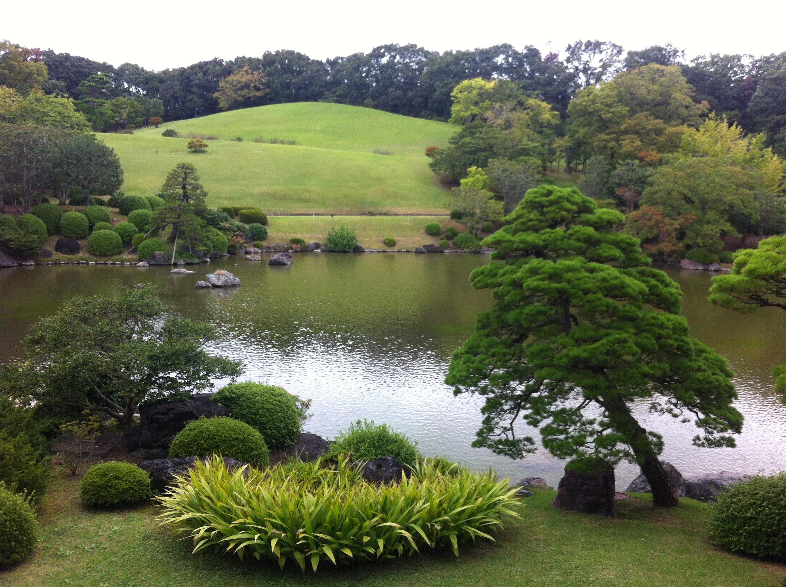 Amazing japanese garden grass pictures best inspiration for Landscape design courses sydney