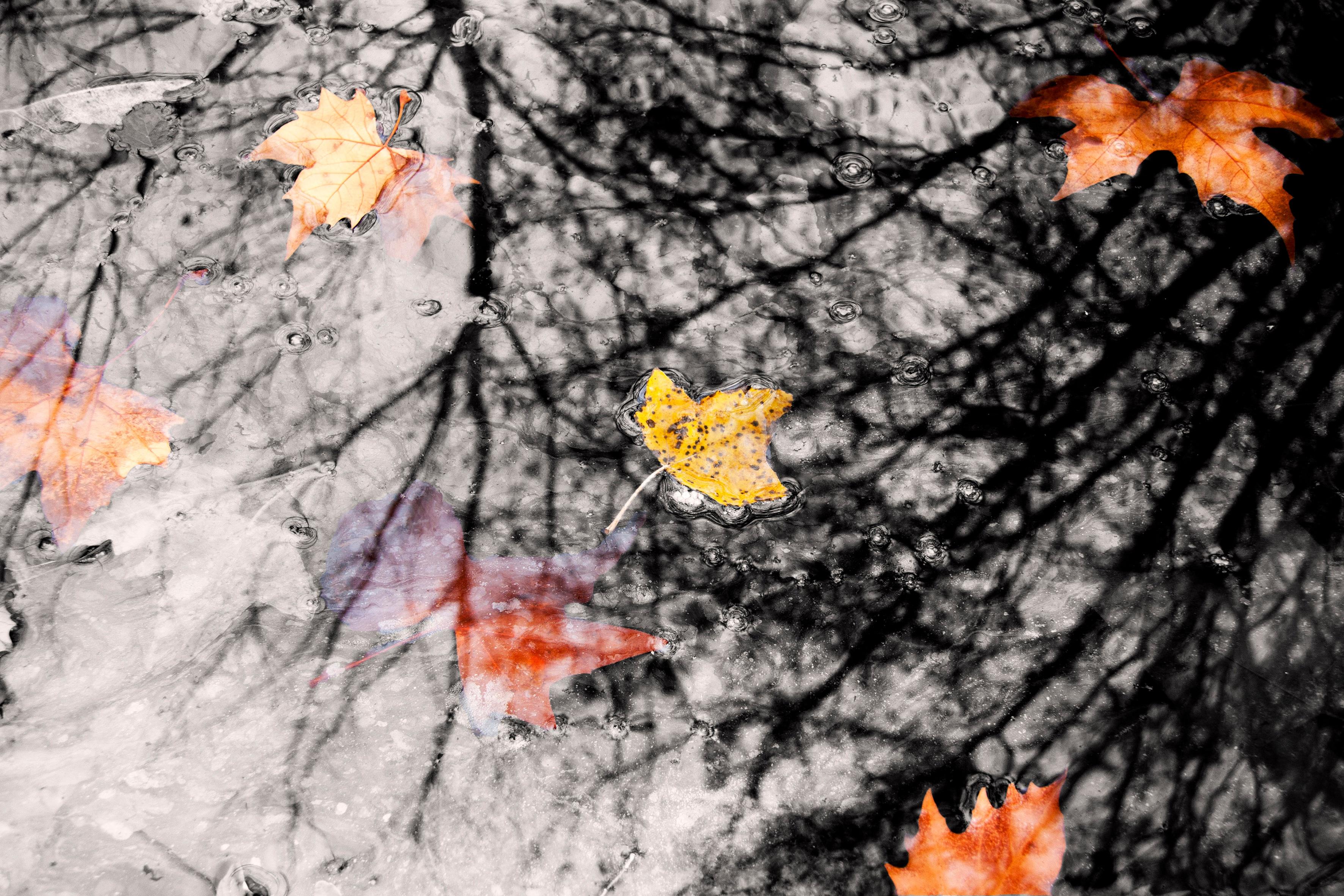 Днем знаний, картинка о погоде осенью