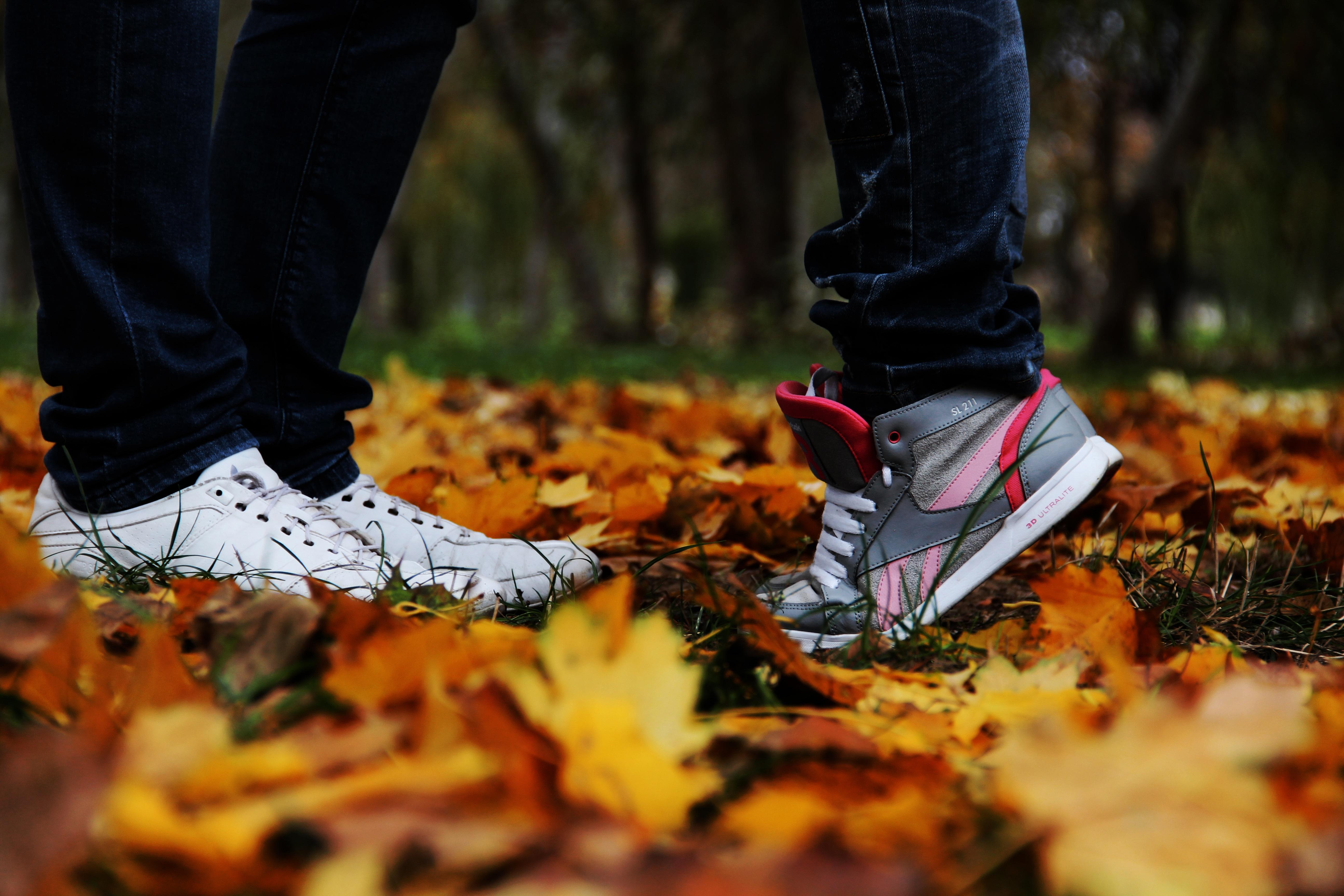 Fotos gratis : árbol, hoja, amor, primavera, color, otoño, Pareja ...