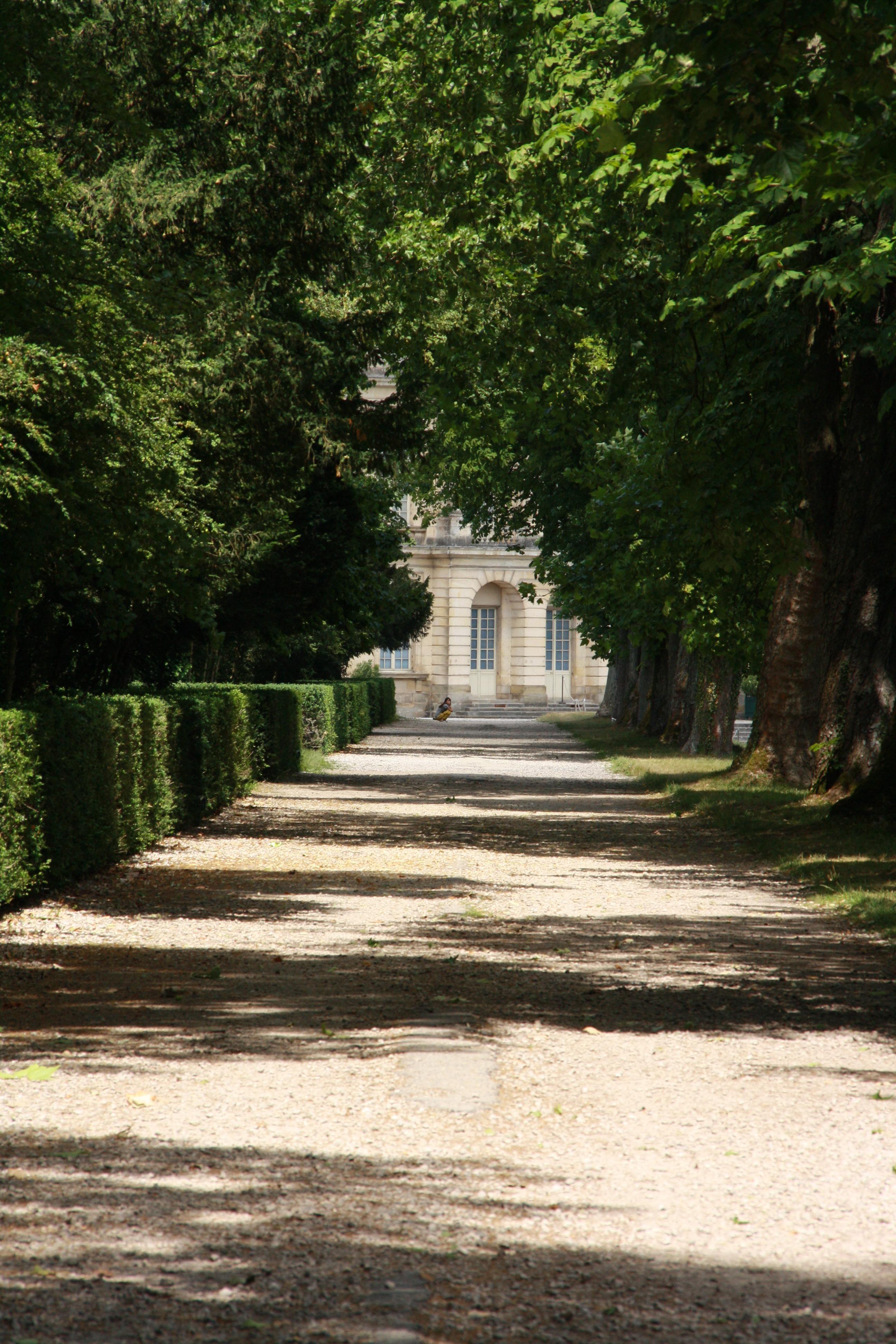Images Gratuites : arbre, lumière, château, l\'automne, parc ...