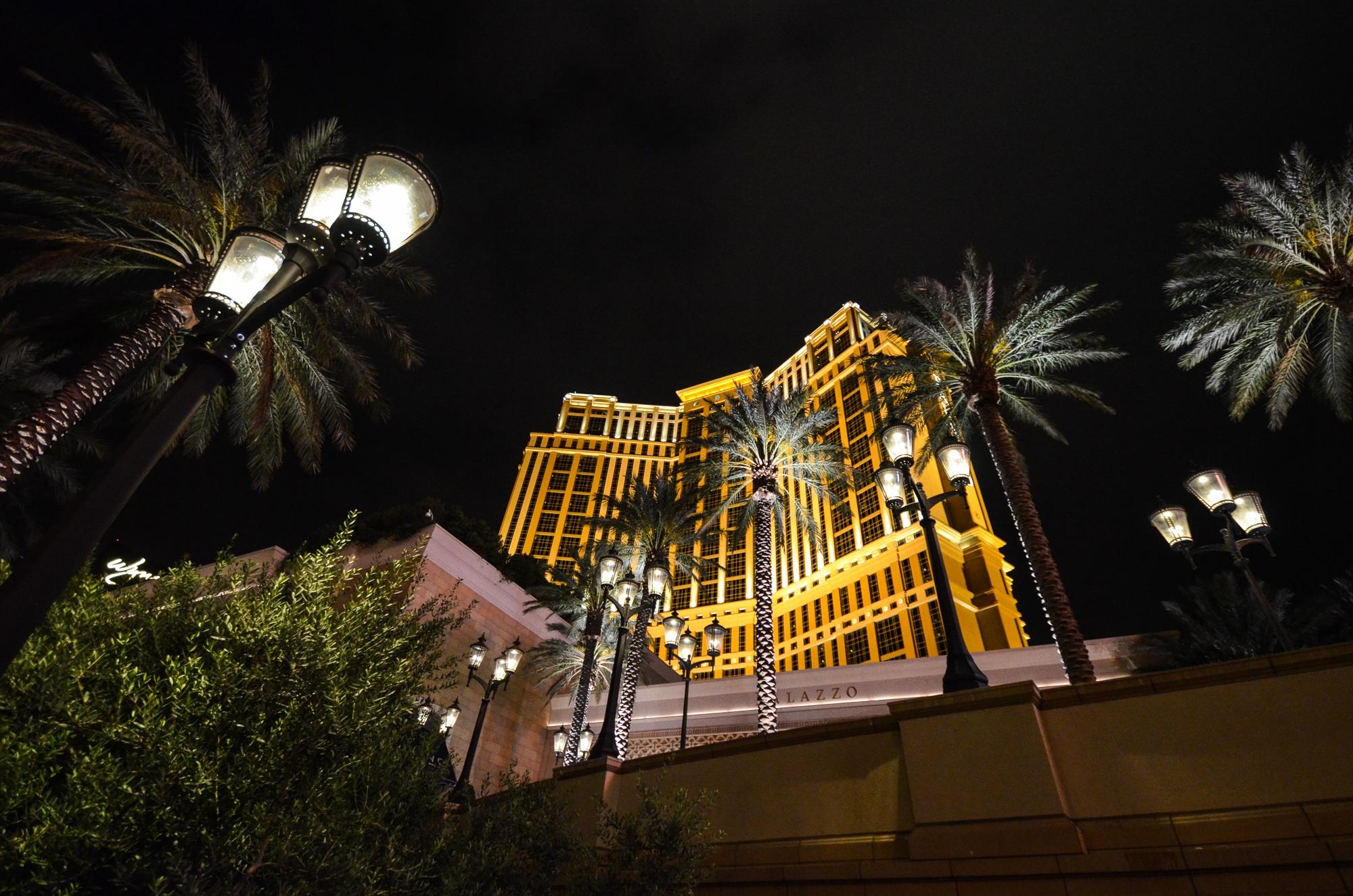 rbol ligero noche ciudad paisaje urbano noche palma estados unidos america punto de referencia iluminacin farola