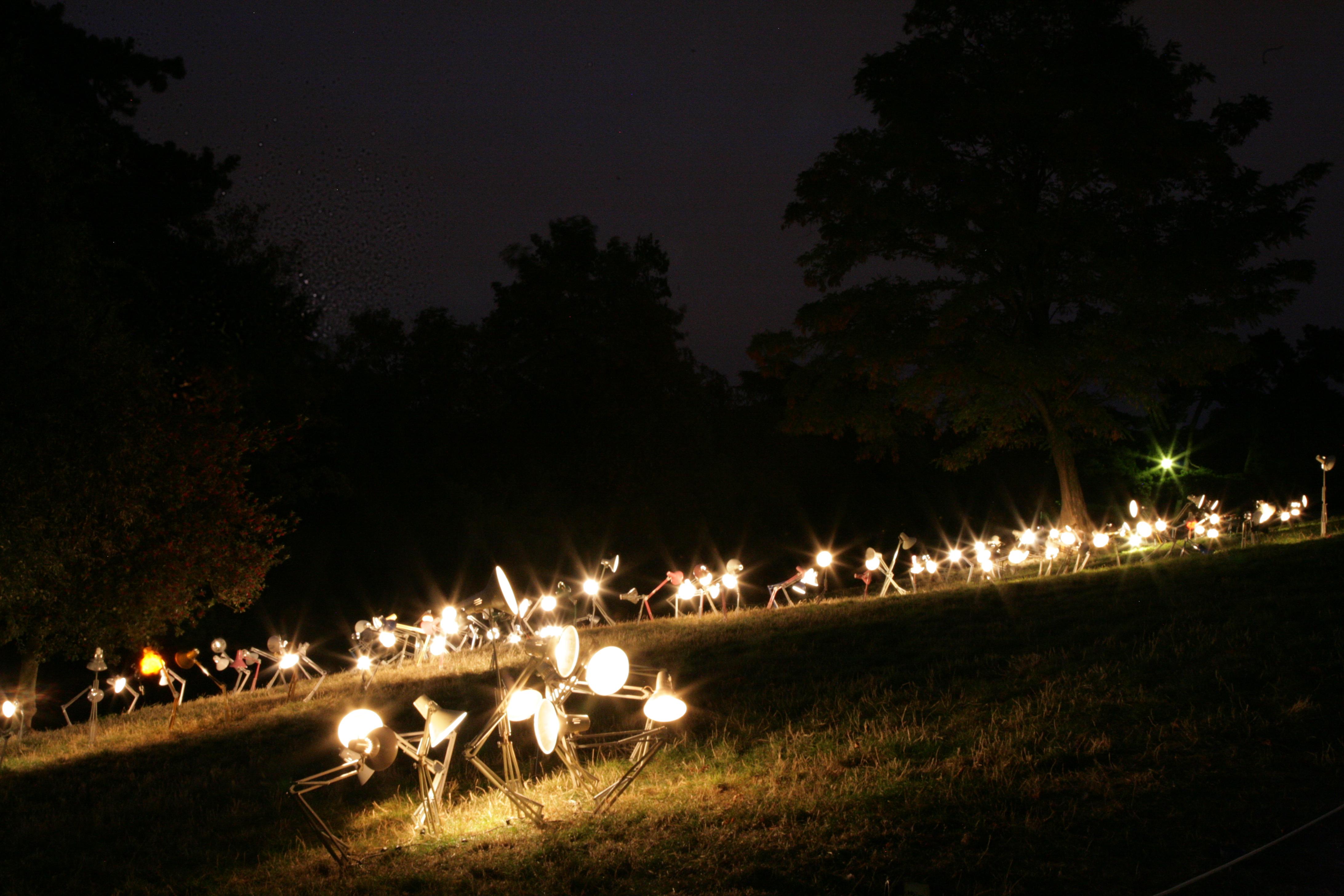 Images Gratuites : arbre, lumière, Paris, crépuscule, France, soir ...