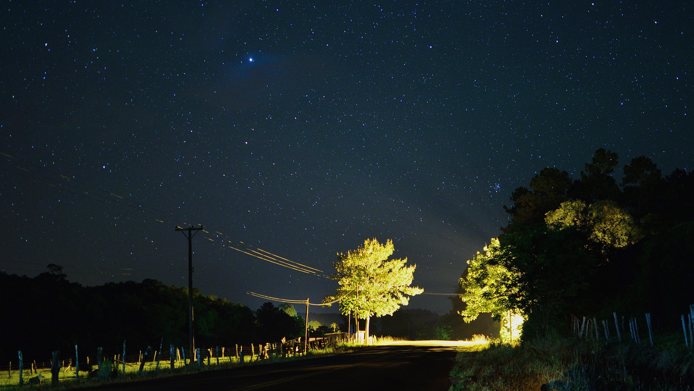 Fotos gratis rbol ligero cielo la carretera noche for Moonlight iluminacion