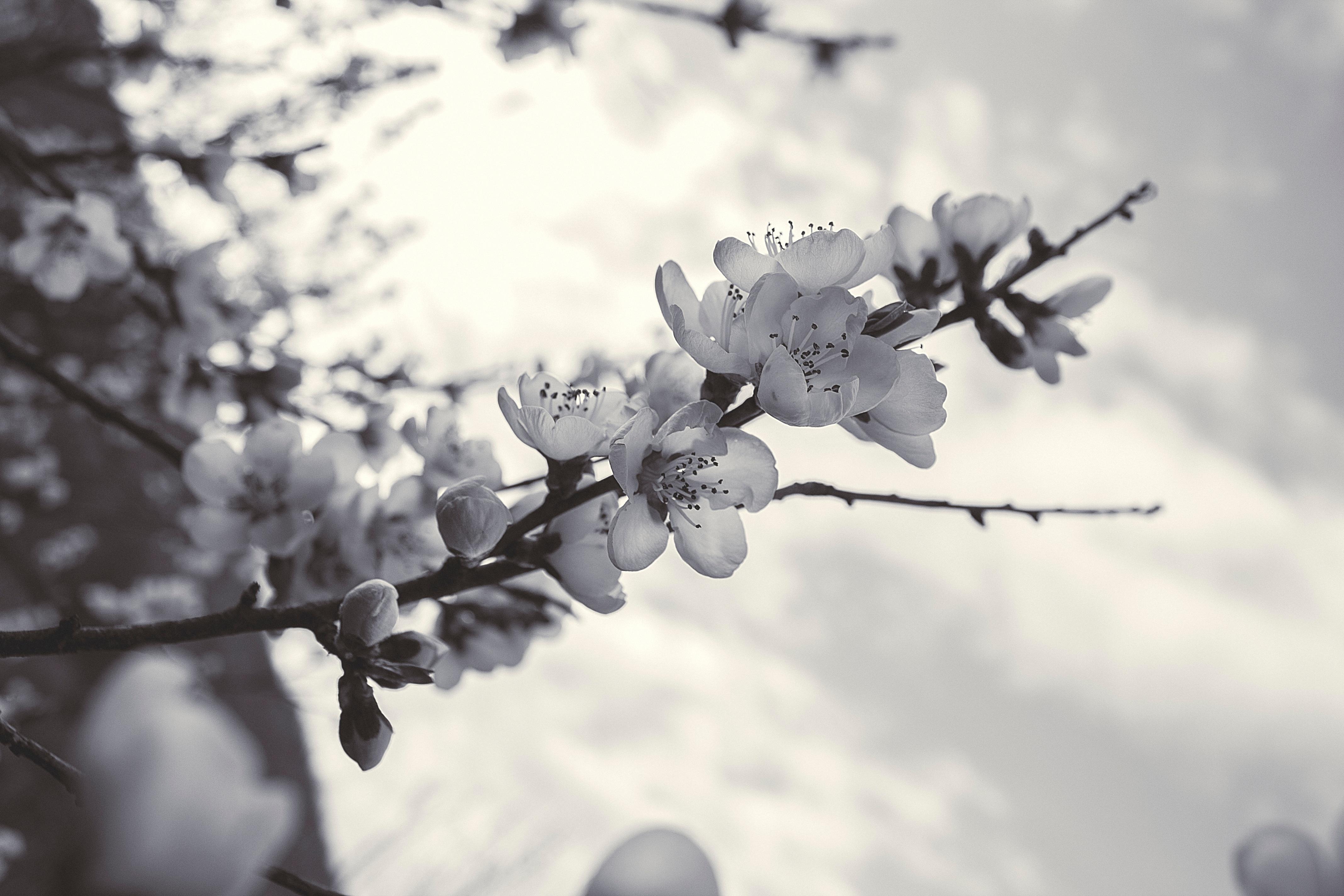 Картинка прогноз погоды весна