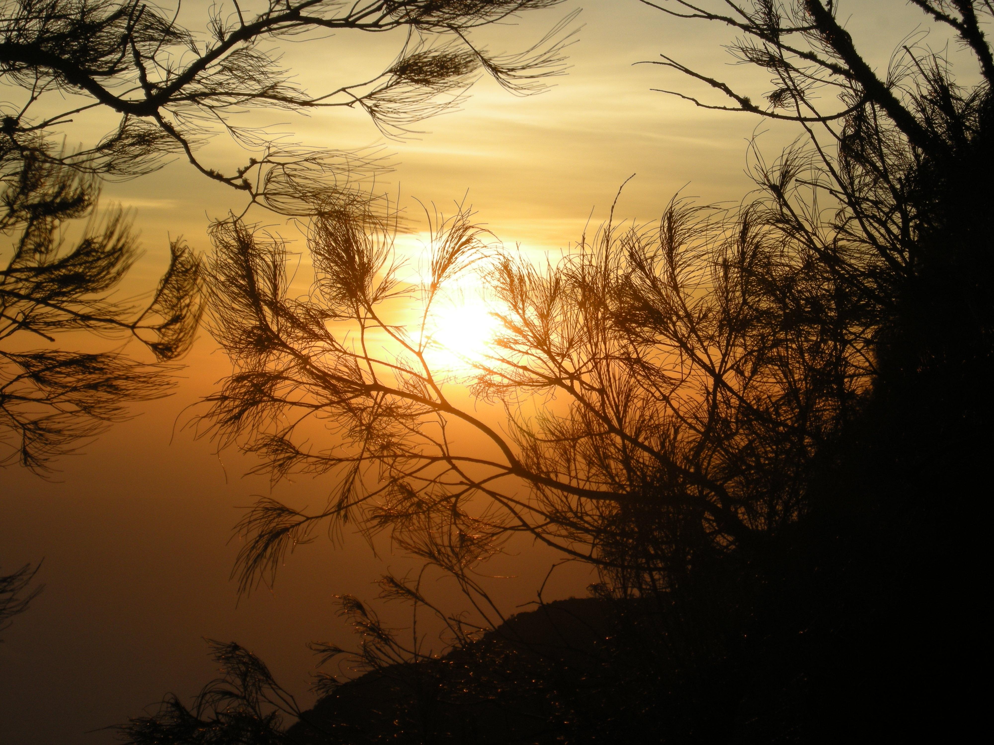 Фото с восходом солнца тени
