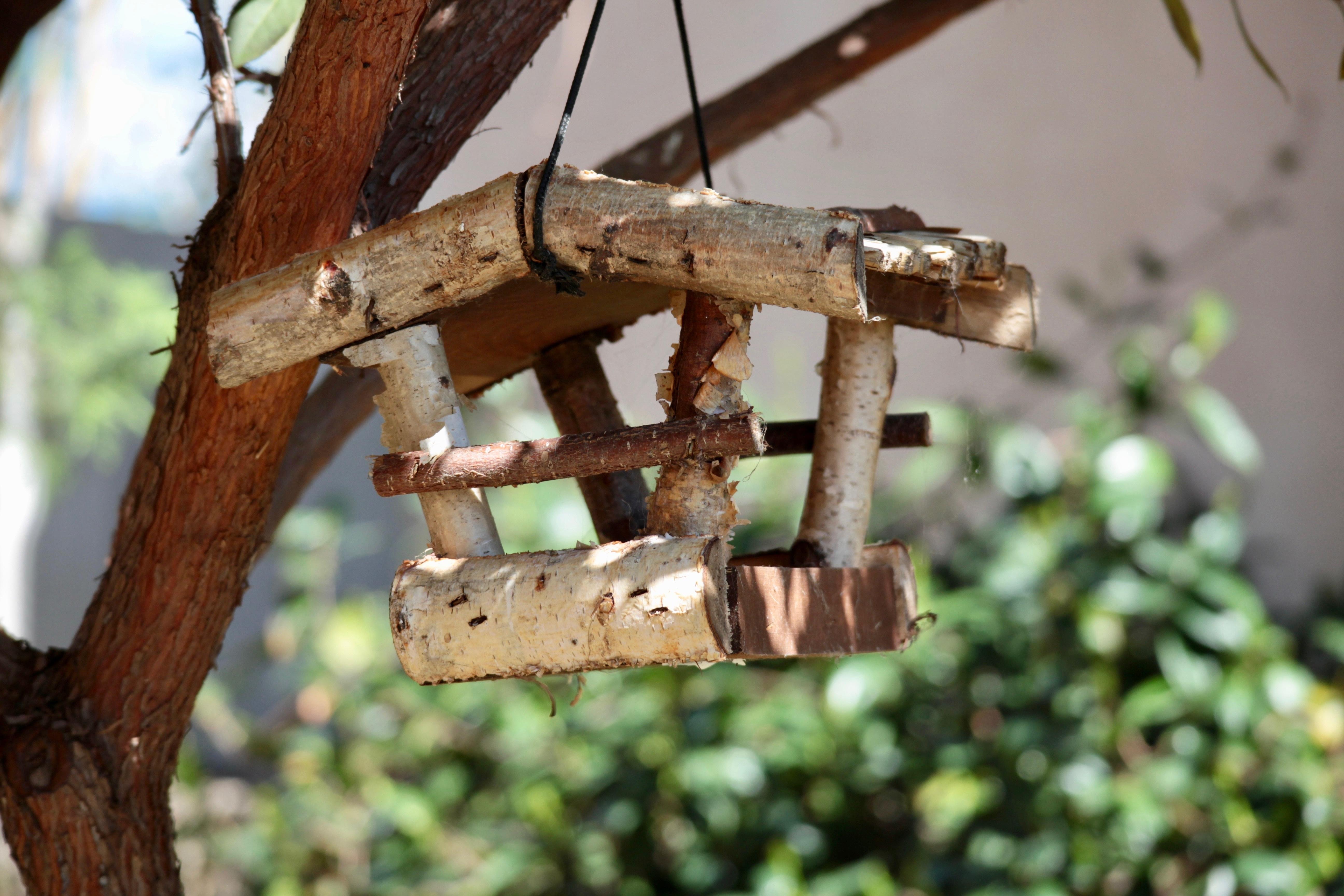 love station pin bird we pinterest feeder garden birdwatching