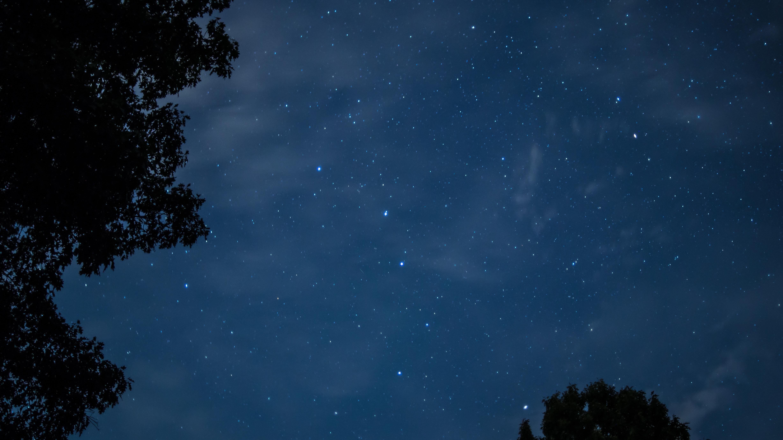 Gambar Pohon Awan Langit Bintang Suasana Siang Hari Konstelasi Ruang Kegelapan Luar Angkasa Ilmu Alam Semesta Tengah Malam Objek Astronomi Fenomena Meteorologi Atmosfer Bumi Komputer Wallpaper Acara Angkasa 4912x2760