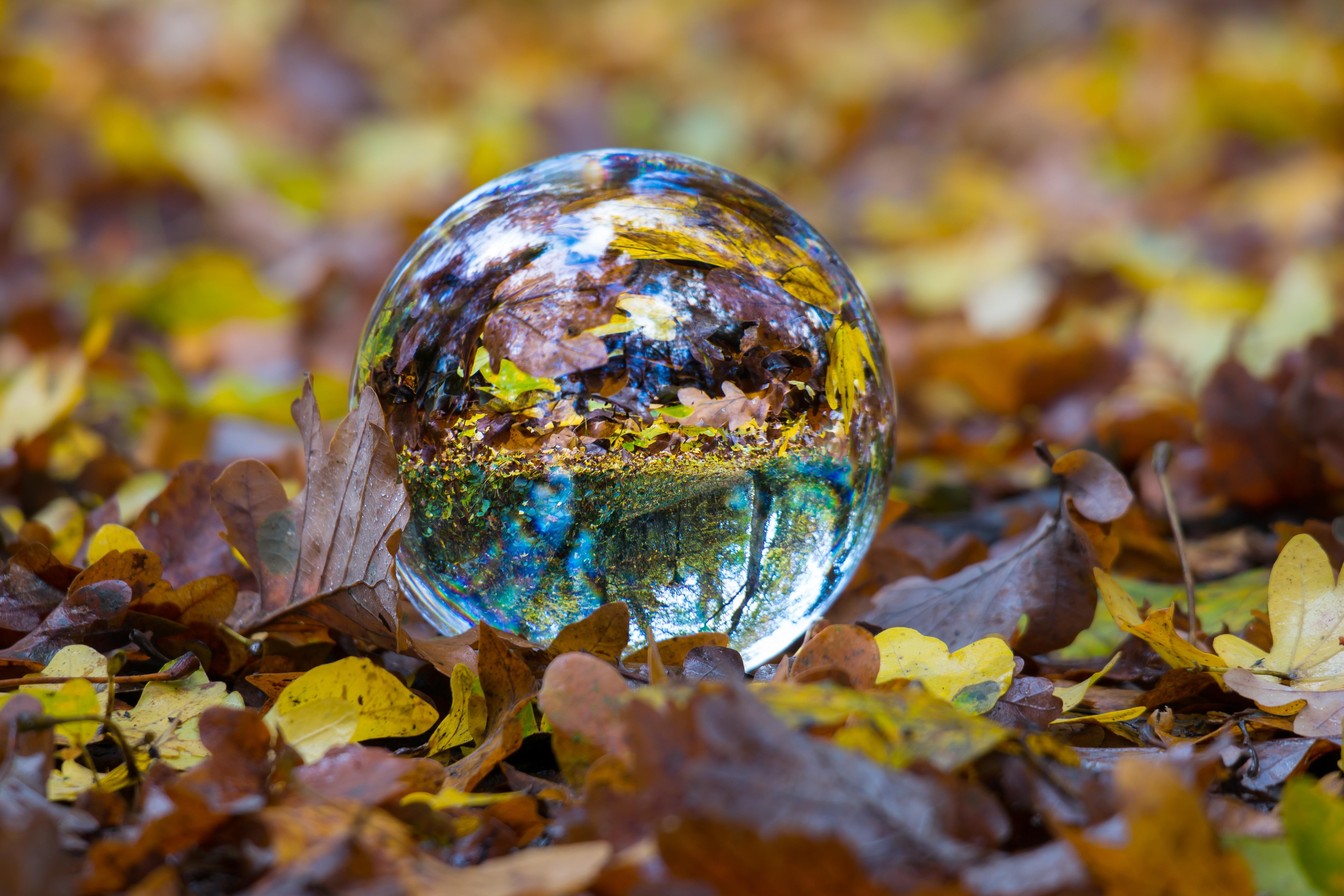 Картинка необычная осень