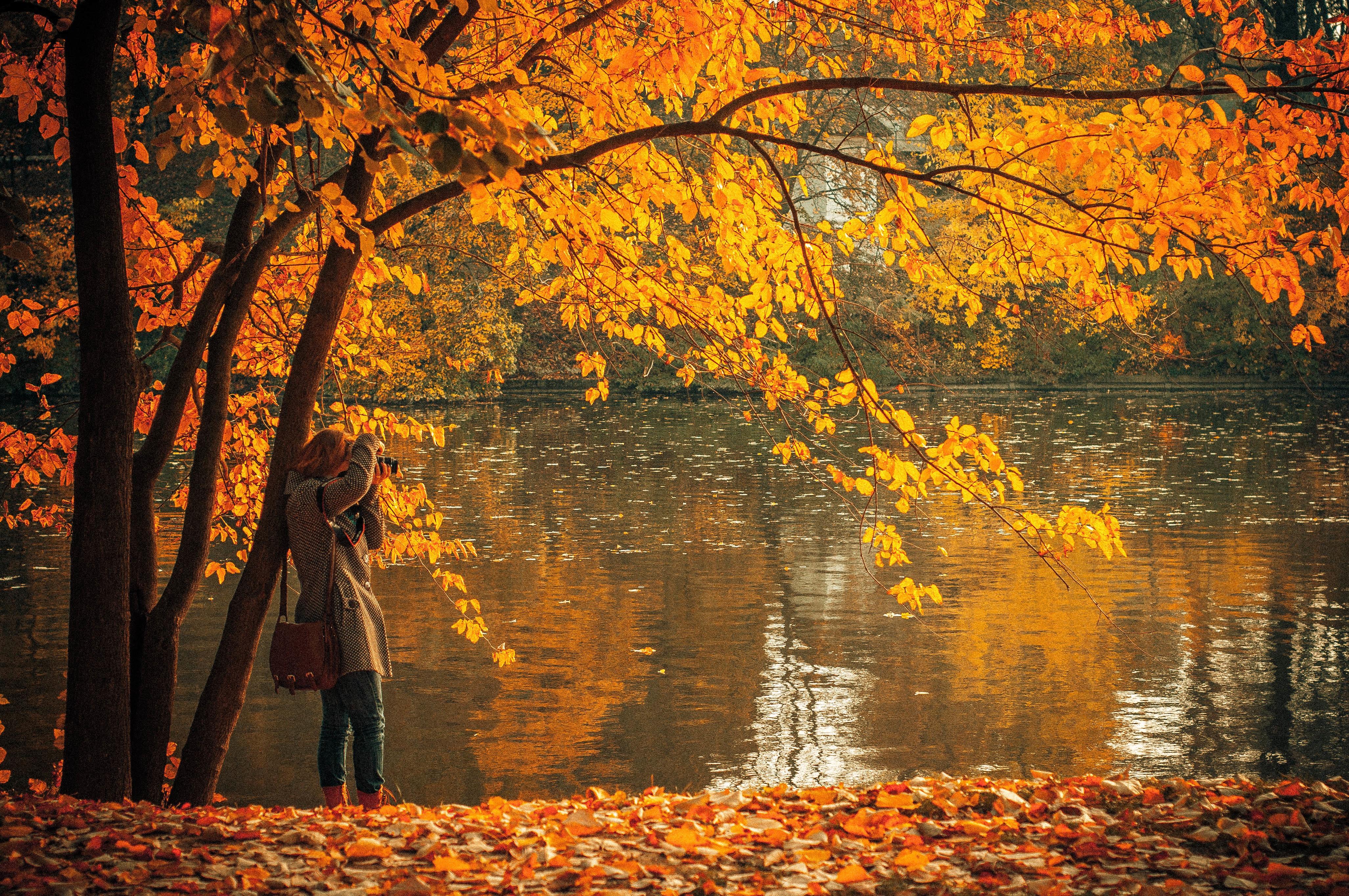 Для, картинки задумчивость осень