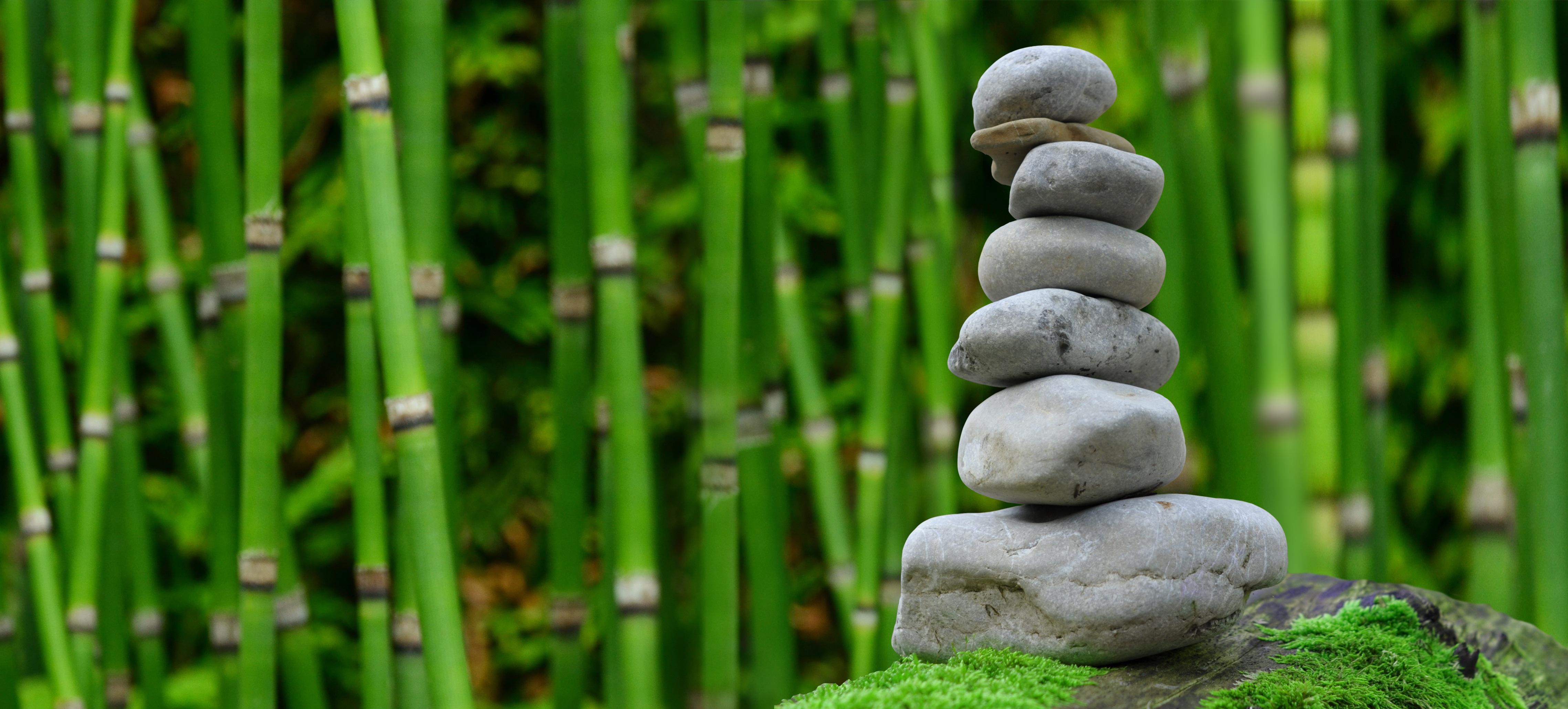 Free images tree nature forest rock plant lawn leaf flower green pebble park monk meditate asia botany rest japan spiritual japanese garden relaxation figure meditation buddha serenity woodland workwithnaturefo