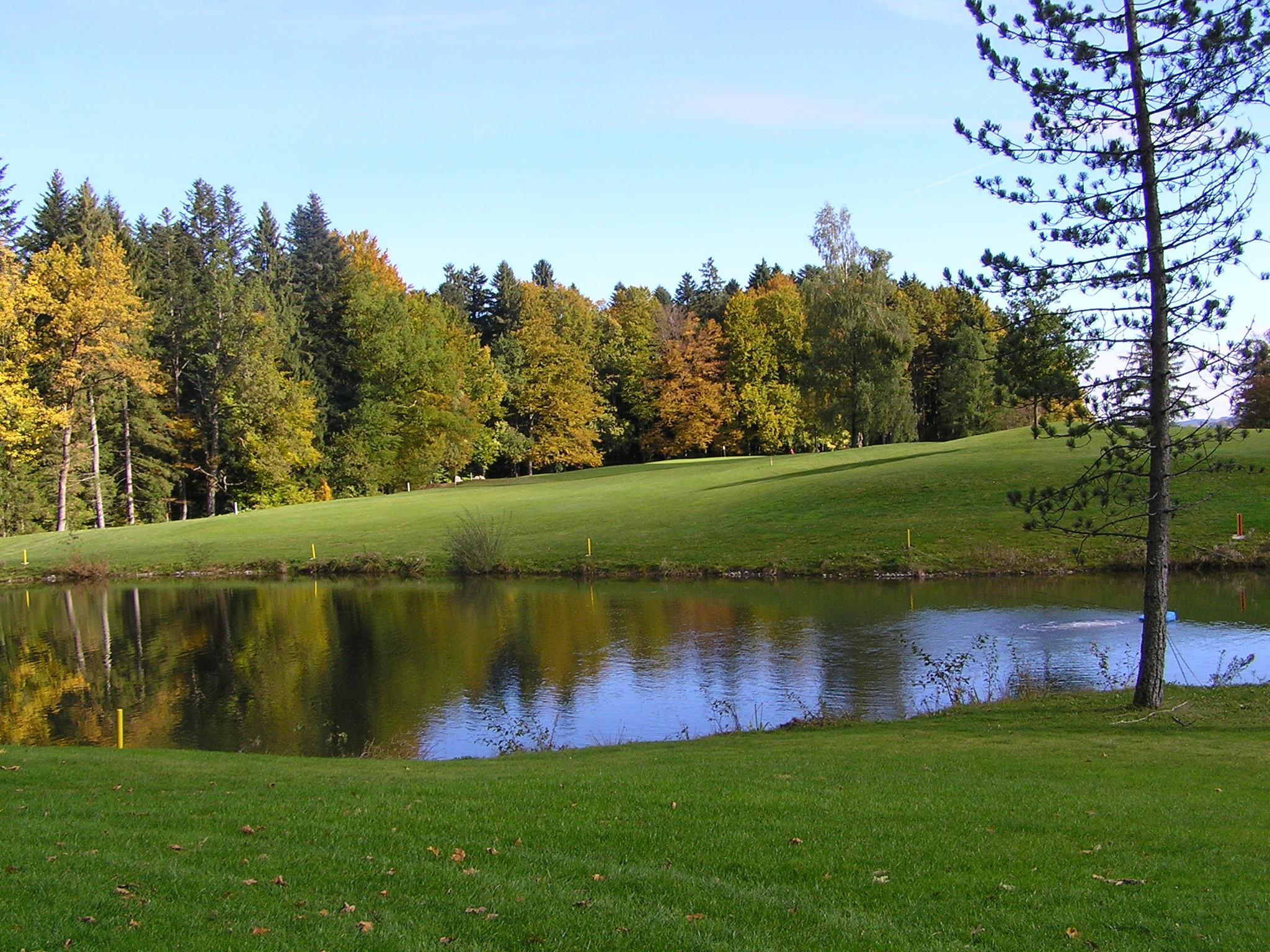 картинка озера с поляной белые голуби