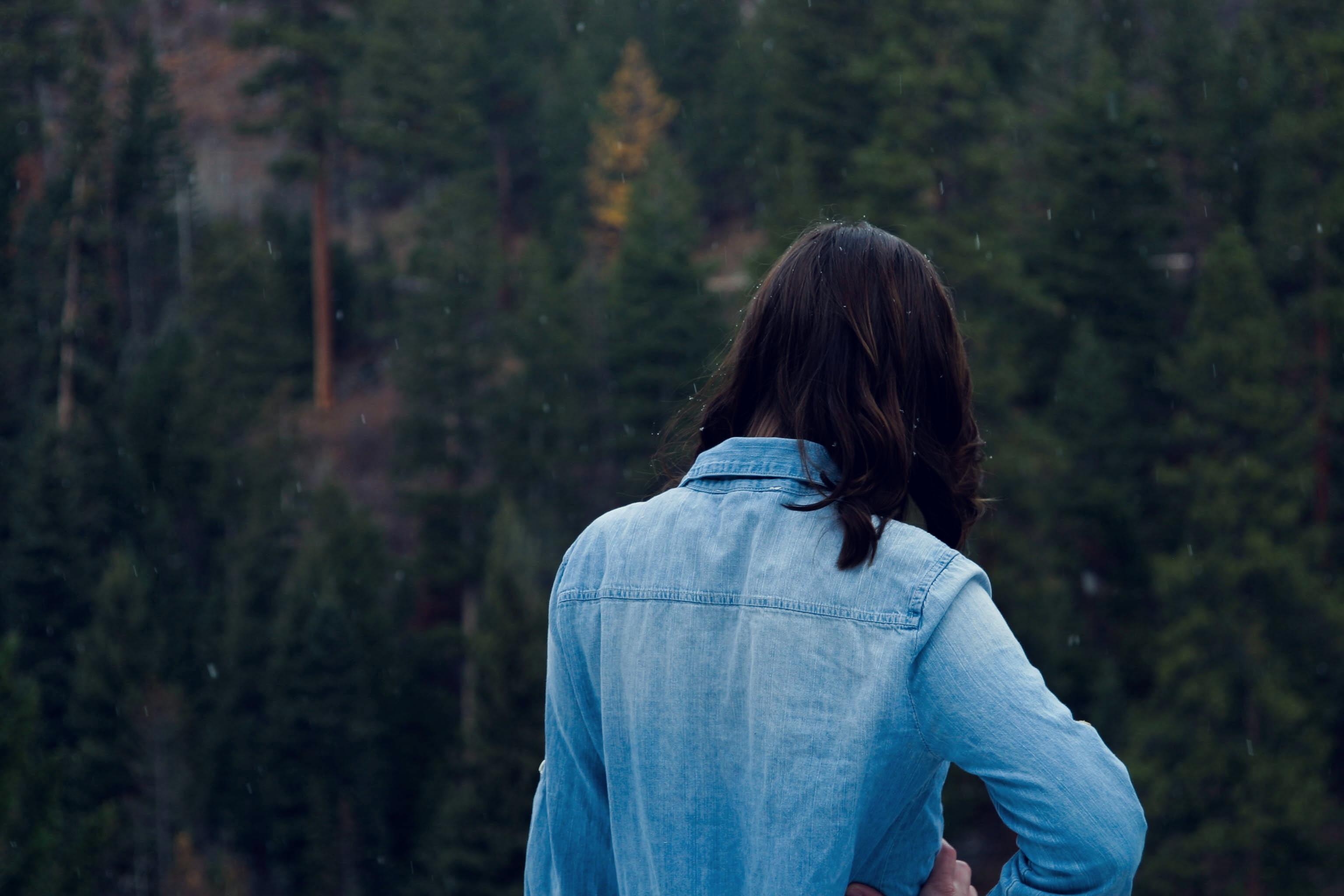 Gambar Pohon Alam Hutan Gunung Musim Dingin Gadis Wanita