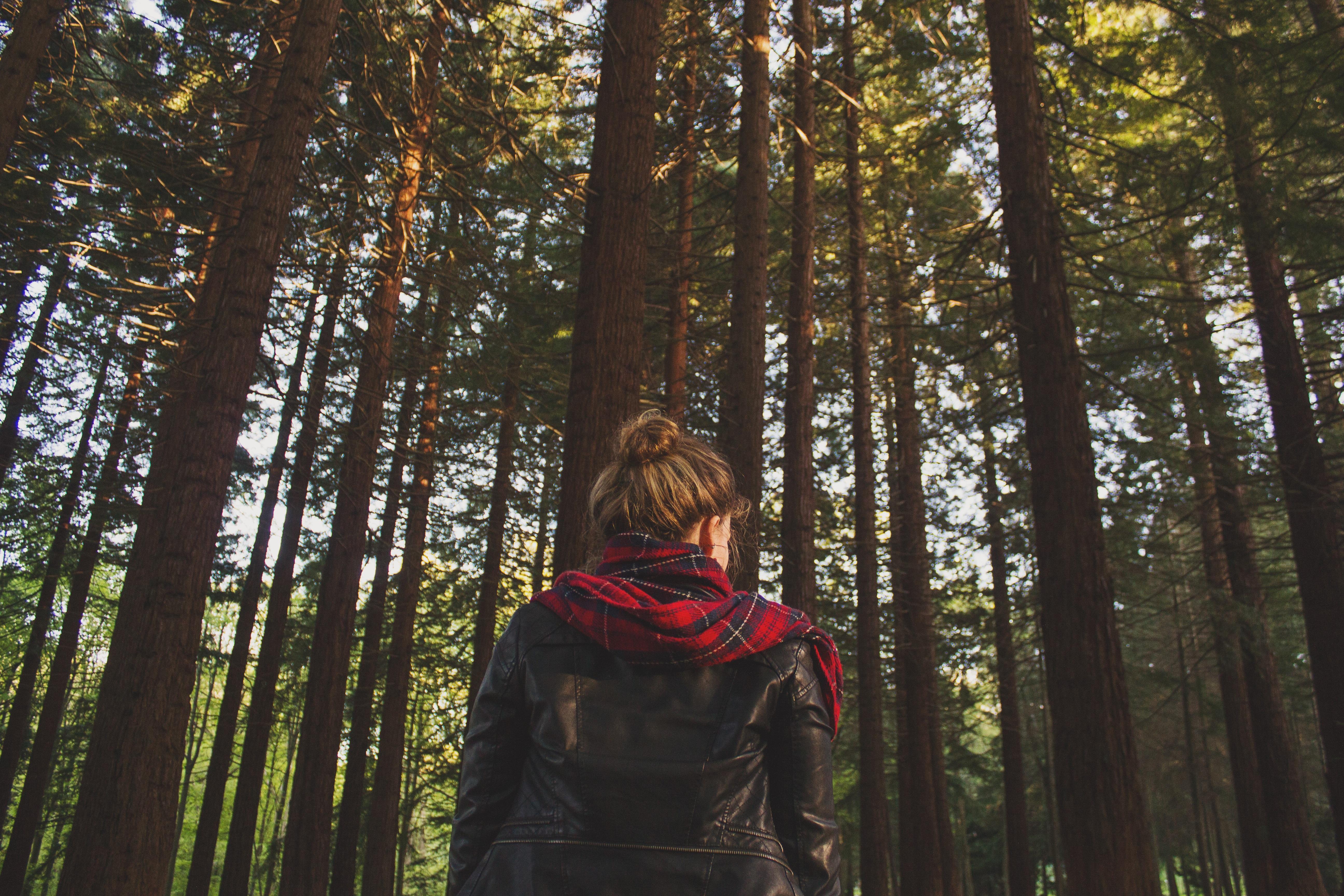 Gratis billeder : træ, natur, Skov, udendørs, ødemark, person, pige, kvinde, læder, sollys, blad ...
